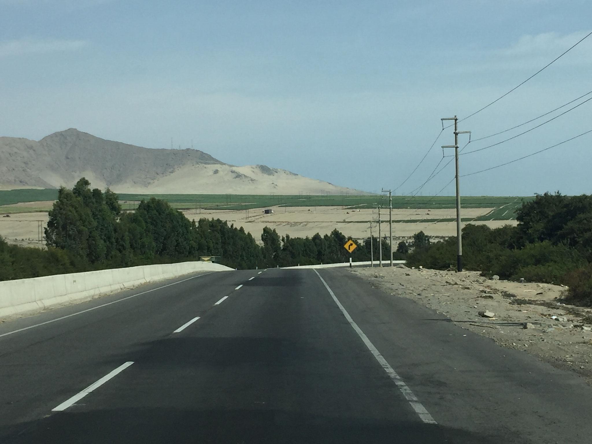 Wüste, Wüste, Wüste