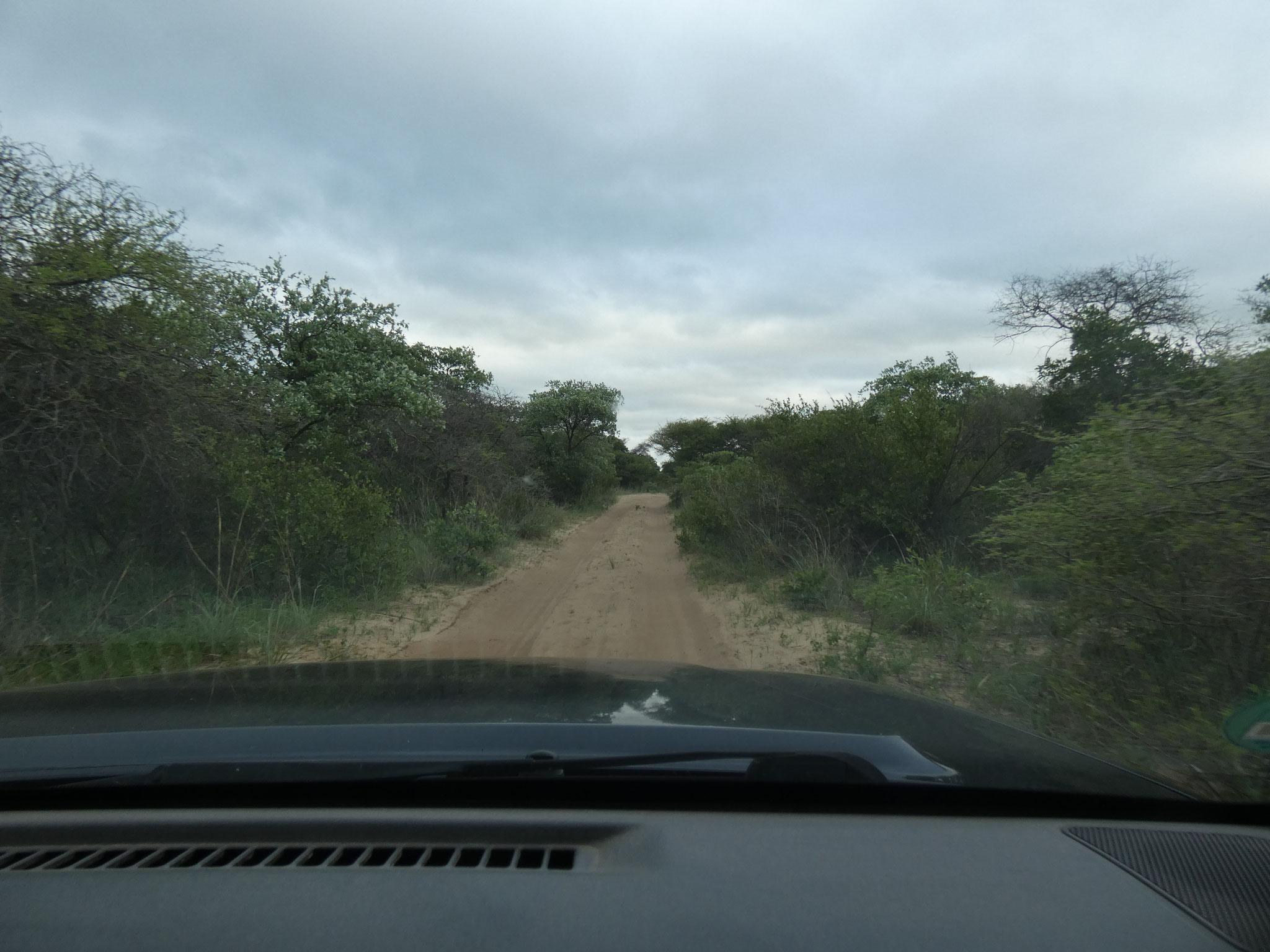 Im Rhino Sanctuarypark