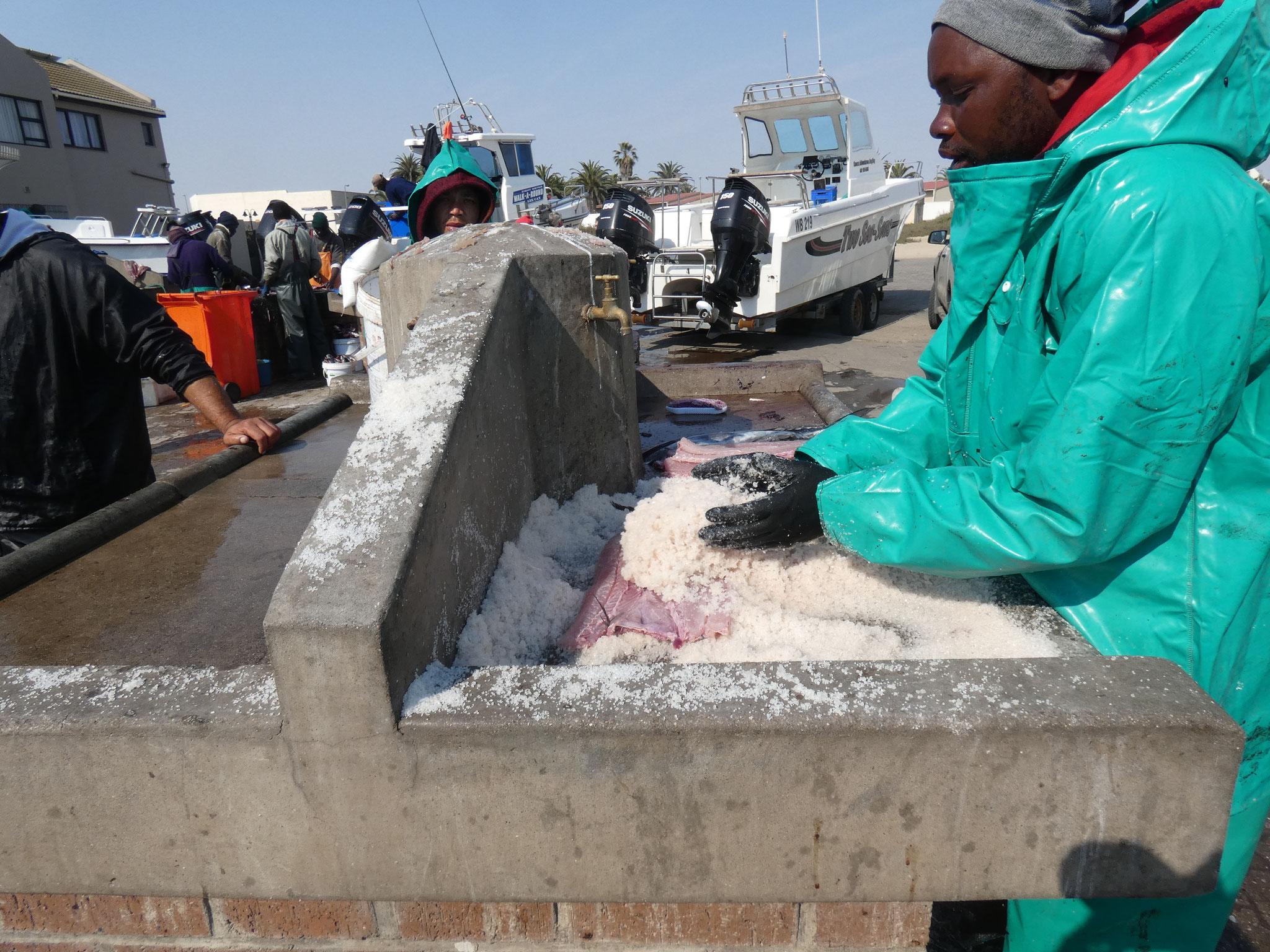 Fischmarkt in Walvis Bay