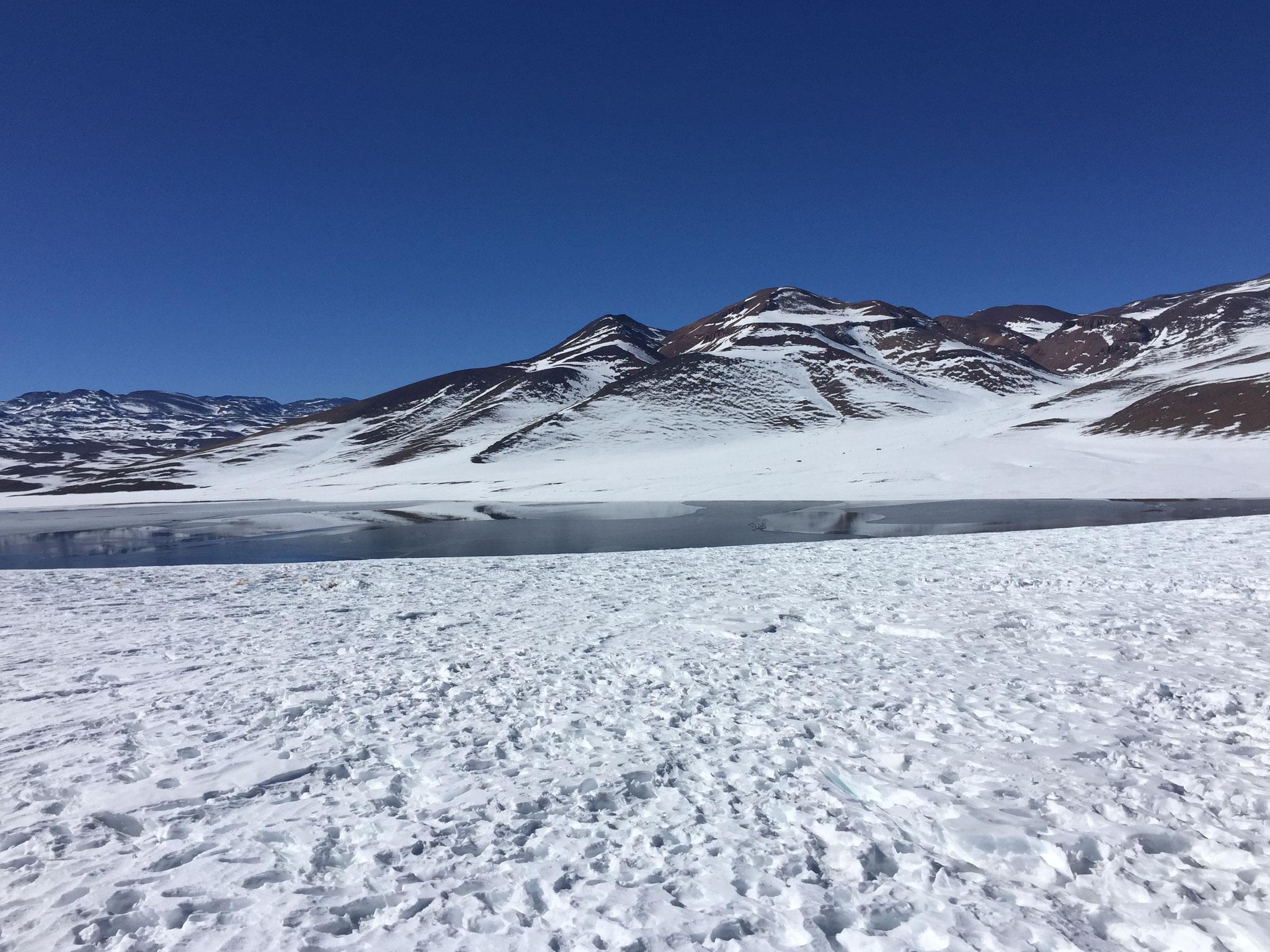 Lagune Miscanti im Schnee!