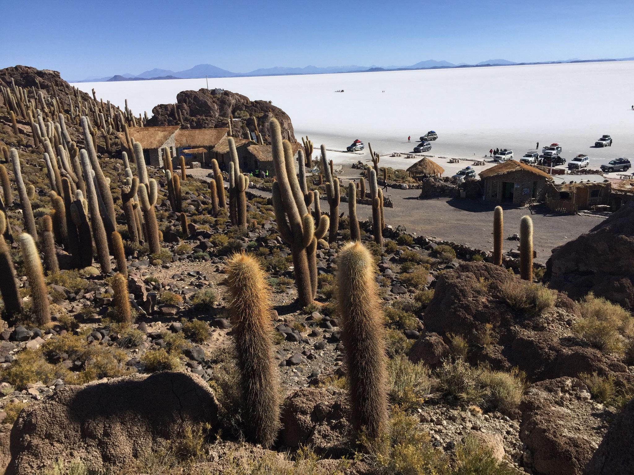 Insel Incahuasi