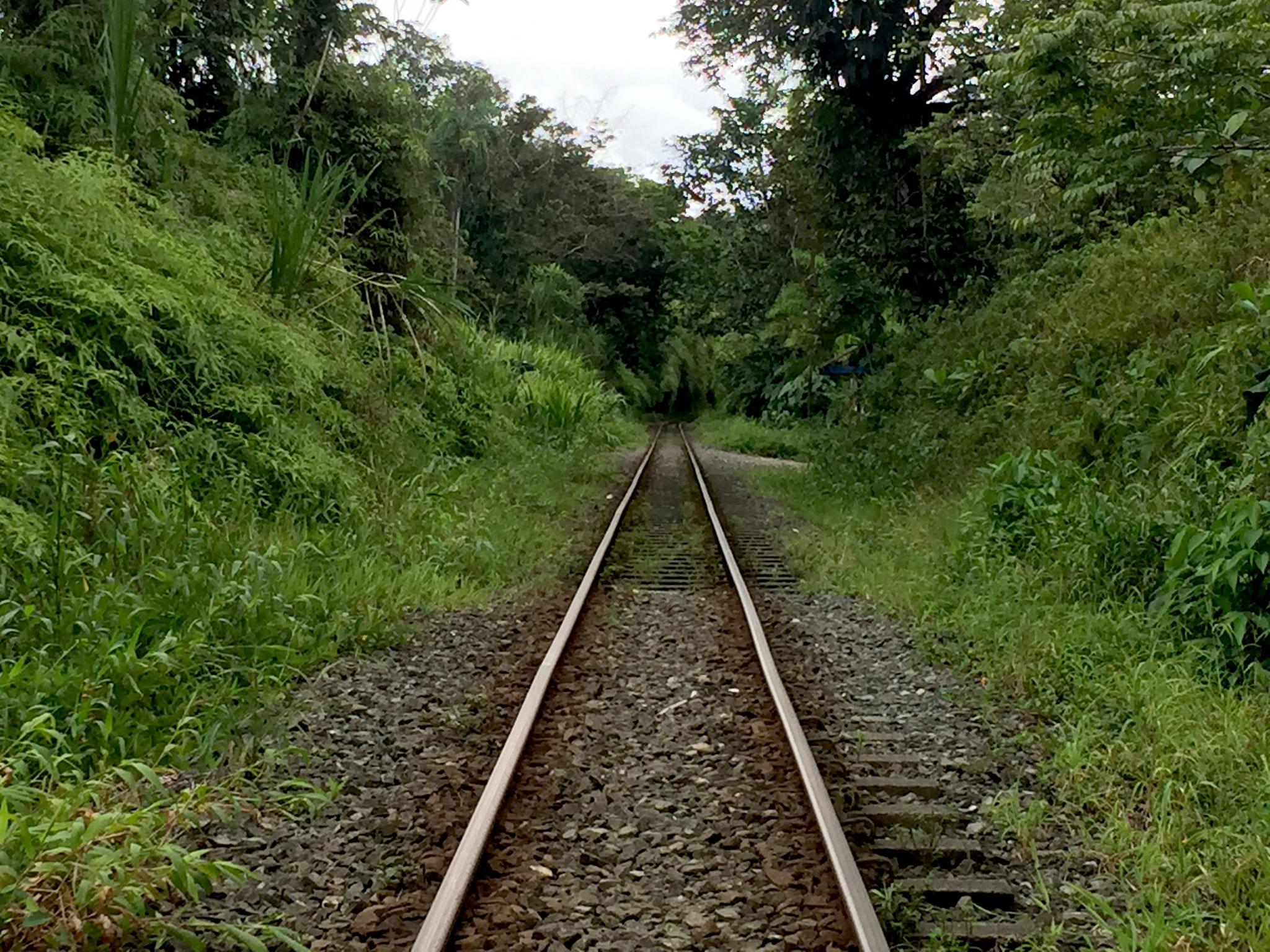 ..... auf Eisenbahnschienen