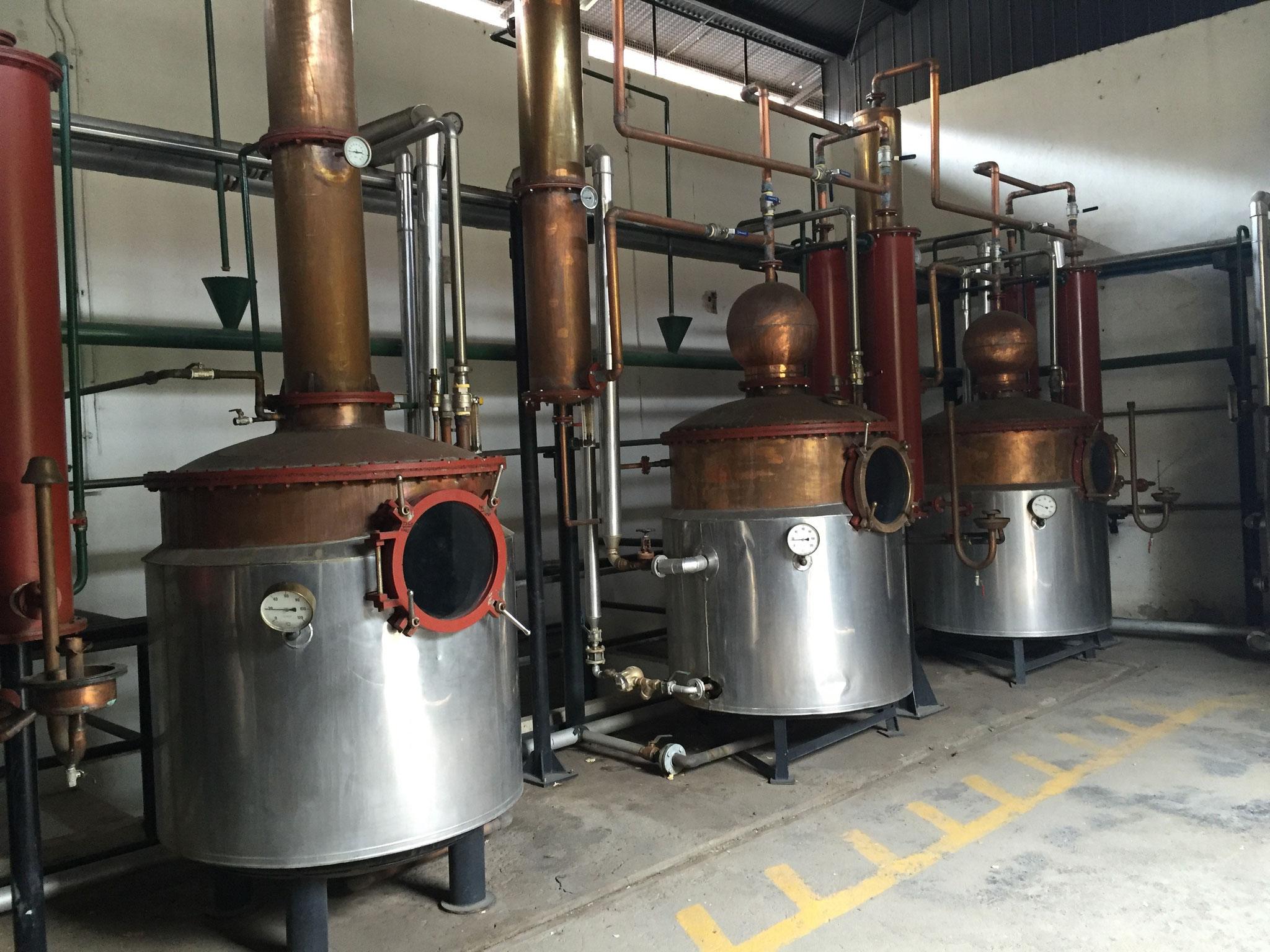 Mistral Destillerie