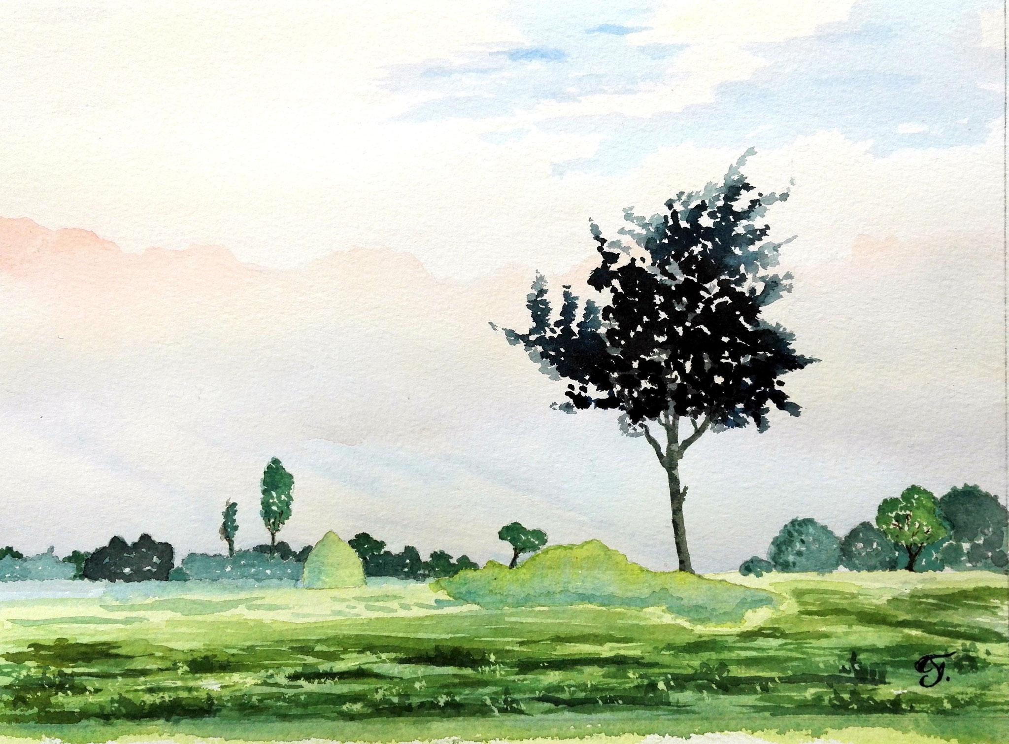 Paysage- aquarelle par Freddy