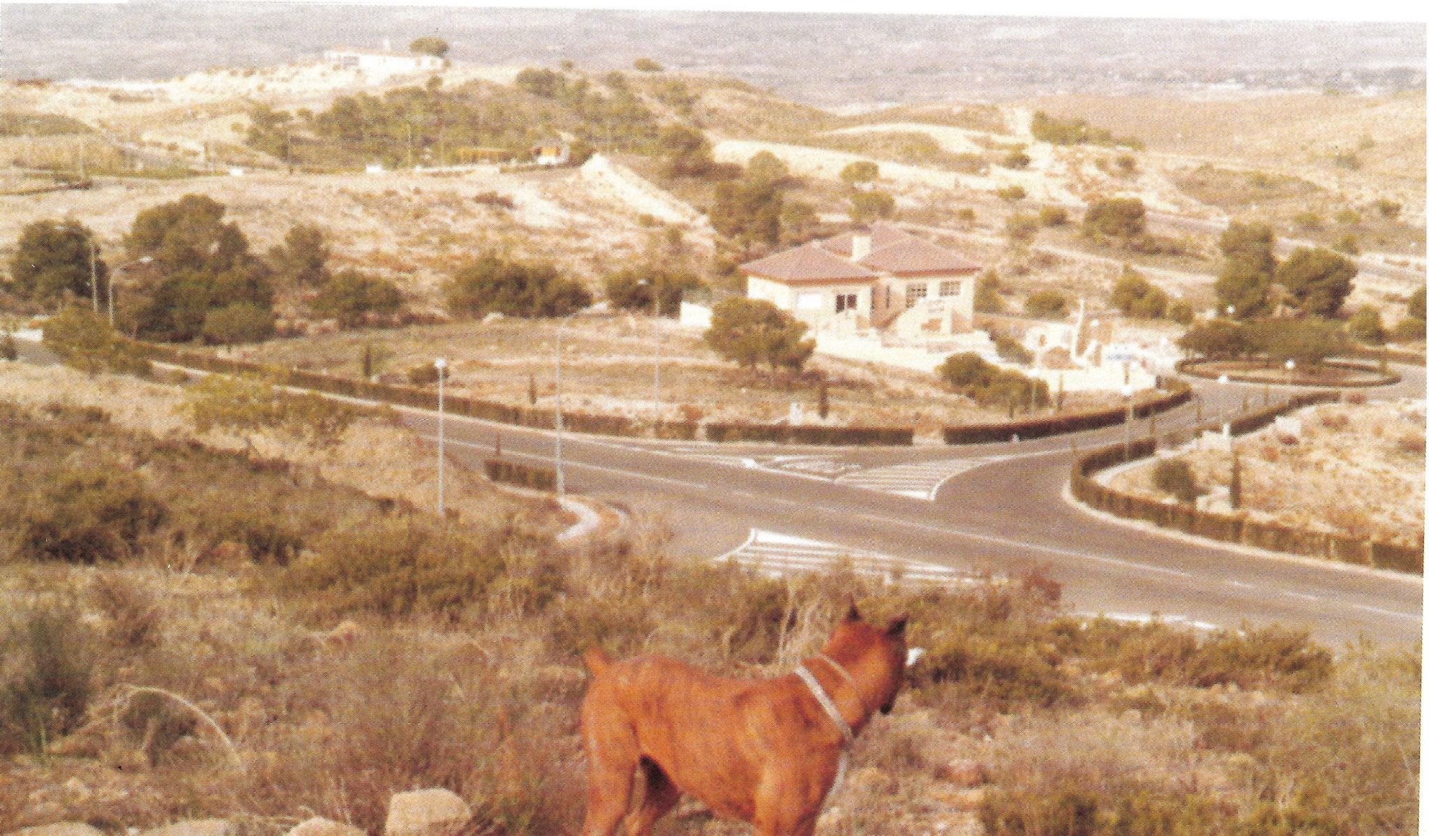 Avenida Reino de Murcia y Calle Aurora