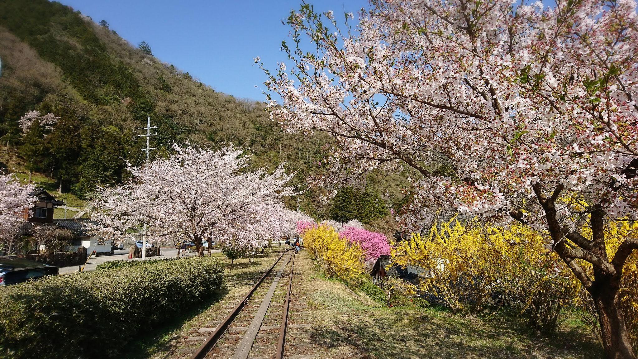 電車正面から 絵画のような風景