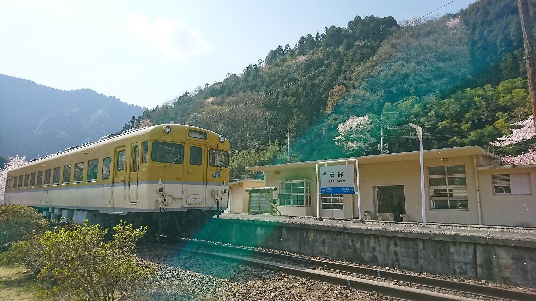 安野 花の駅公園 電車:キハ58