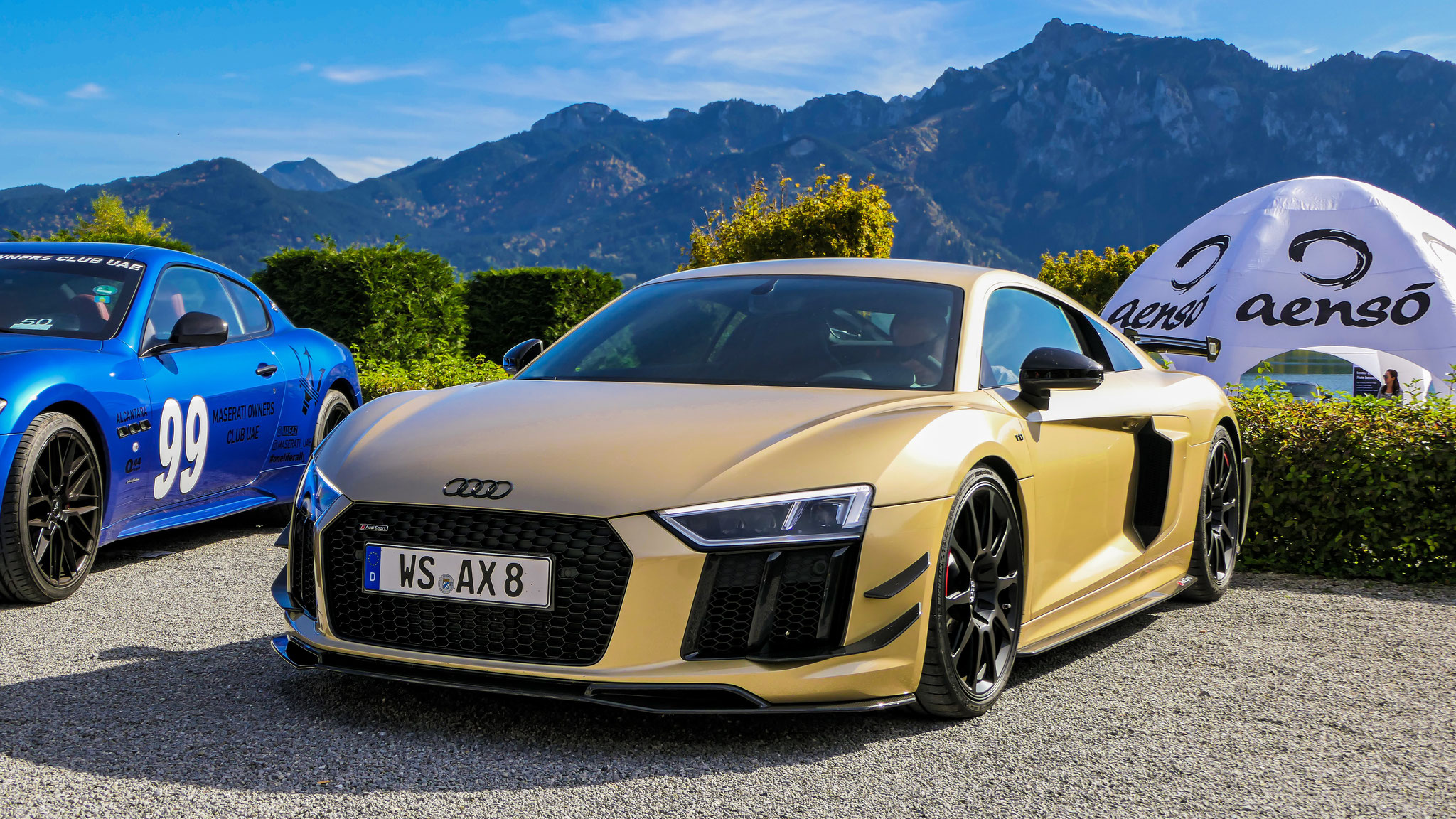 Audi R8 V10 Performance Parts - WS-AX-8