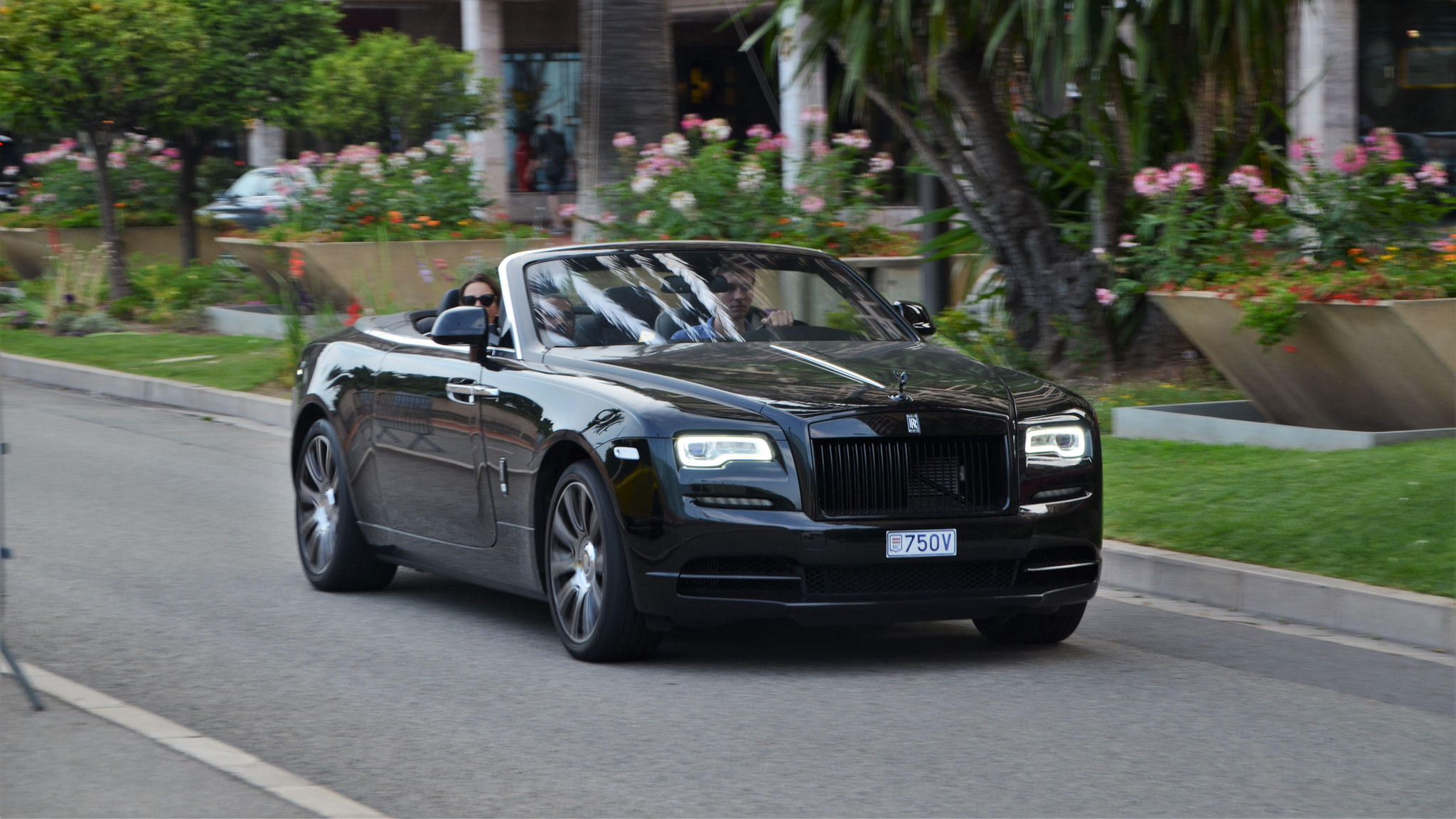 Rolls Royce Dawn - 750V (MC)