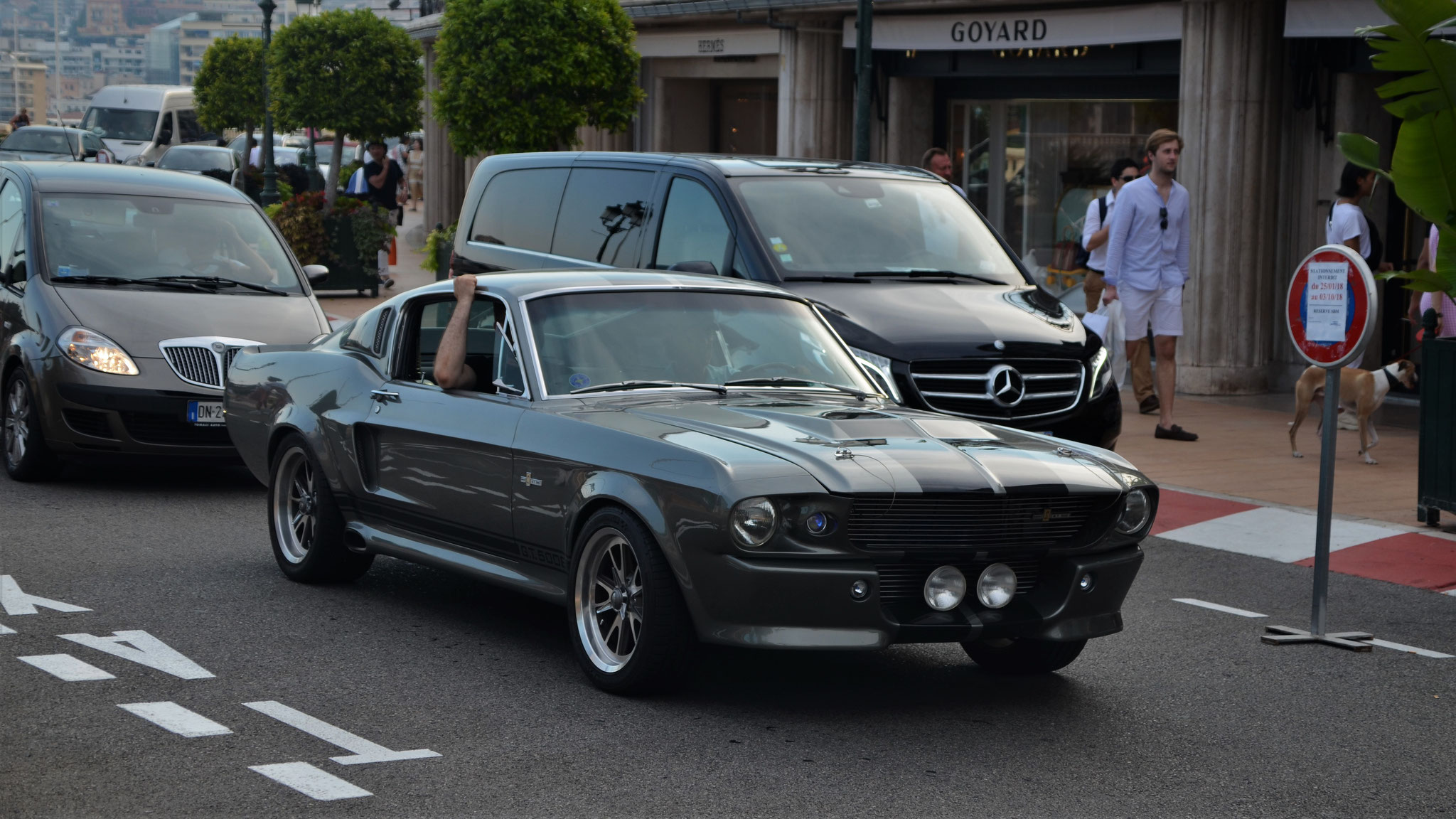 Mustang Shelby G.T. 500