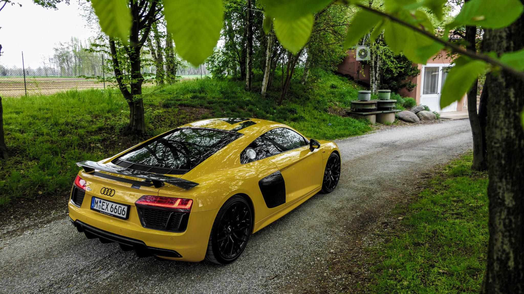 Audi R8 V10 RWD - M-EX-6606