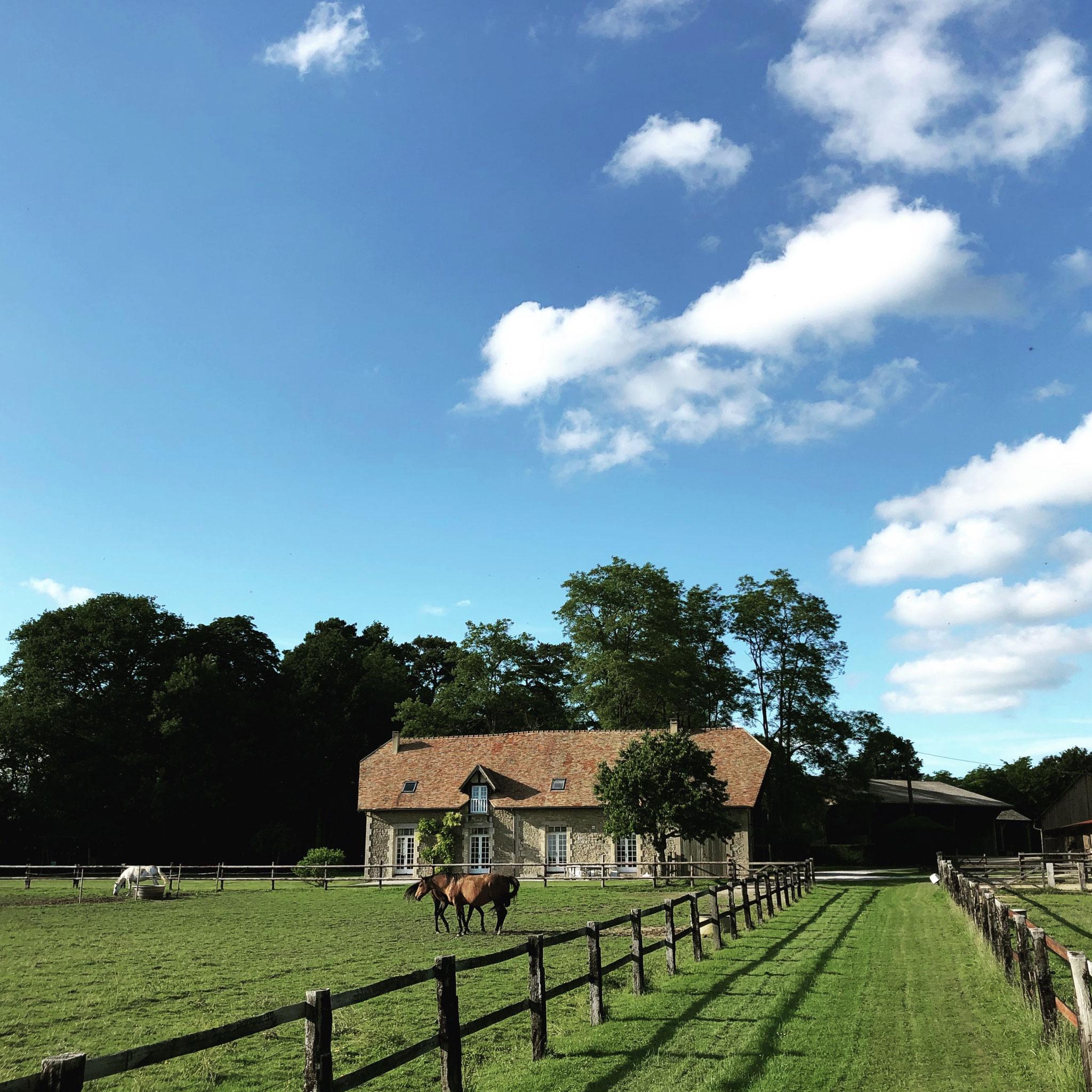 Chemin de ballade entre les herbages des chevaux