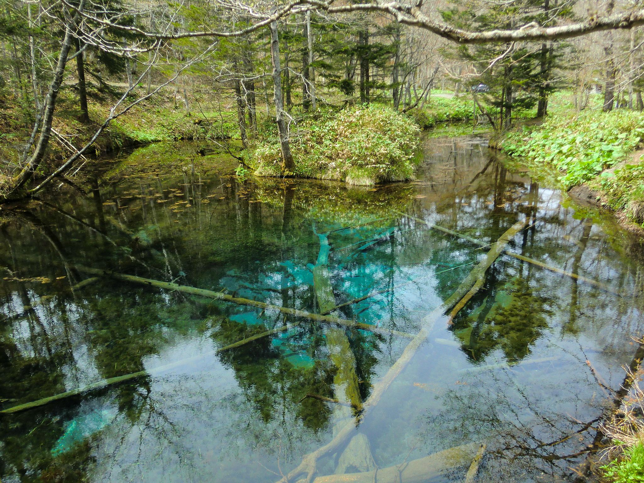 北海道清里町 神の子池
