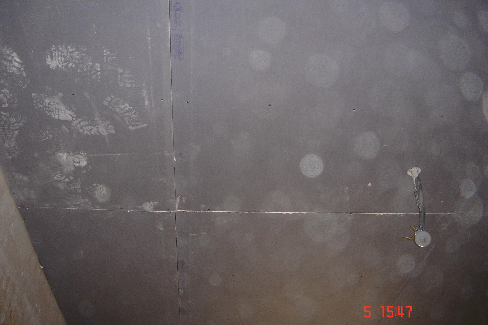 Pose de  faux plafond avec PlacoPhonique  Robertsau 67 Activ Renovation