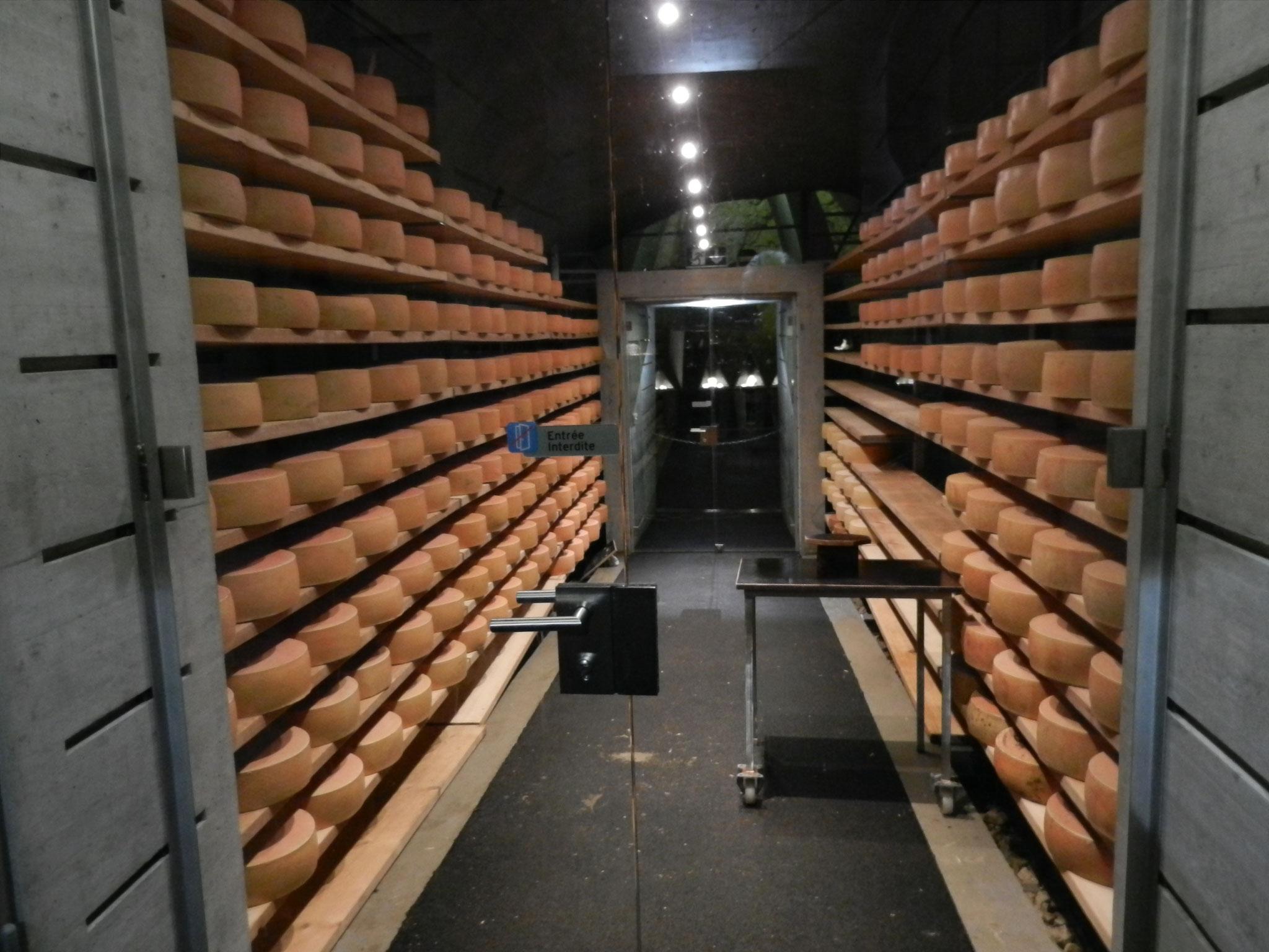 ...in der Grotte werden auch Käse gelagert...
