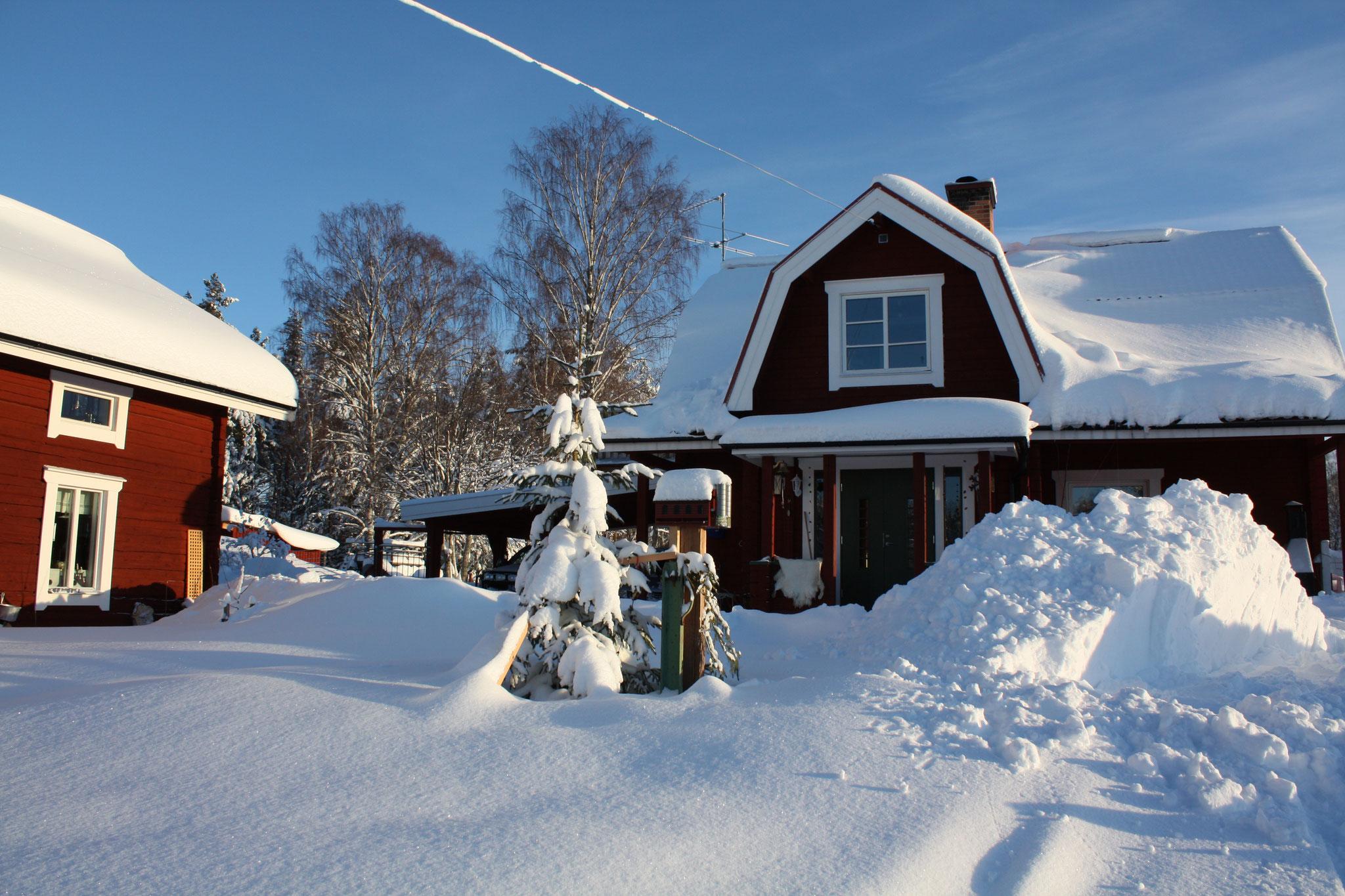 Skogsfeen - Ansicht auf Haus und Ferienhaus