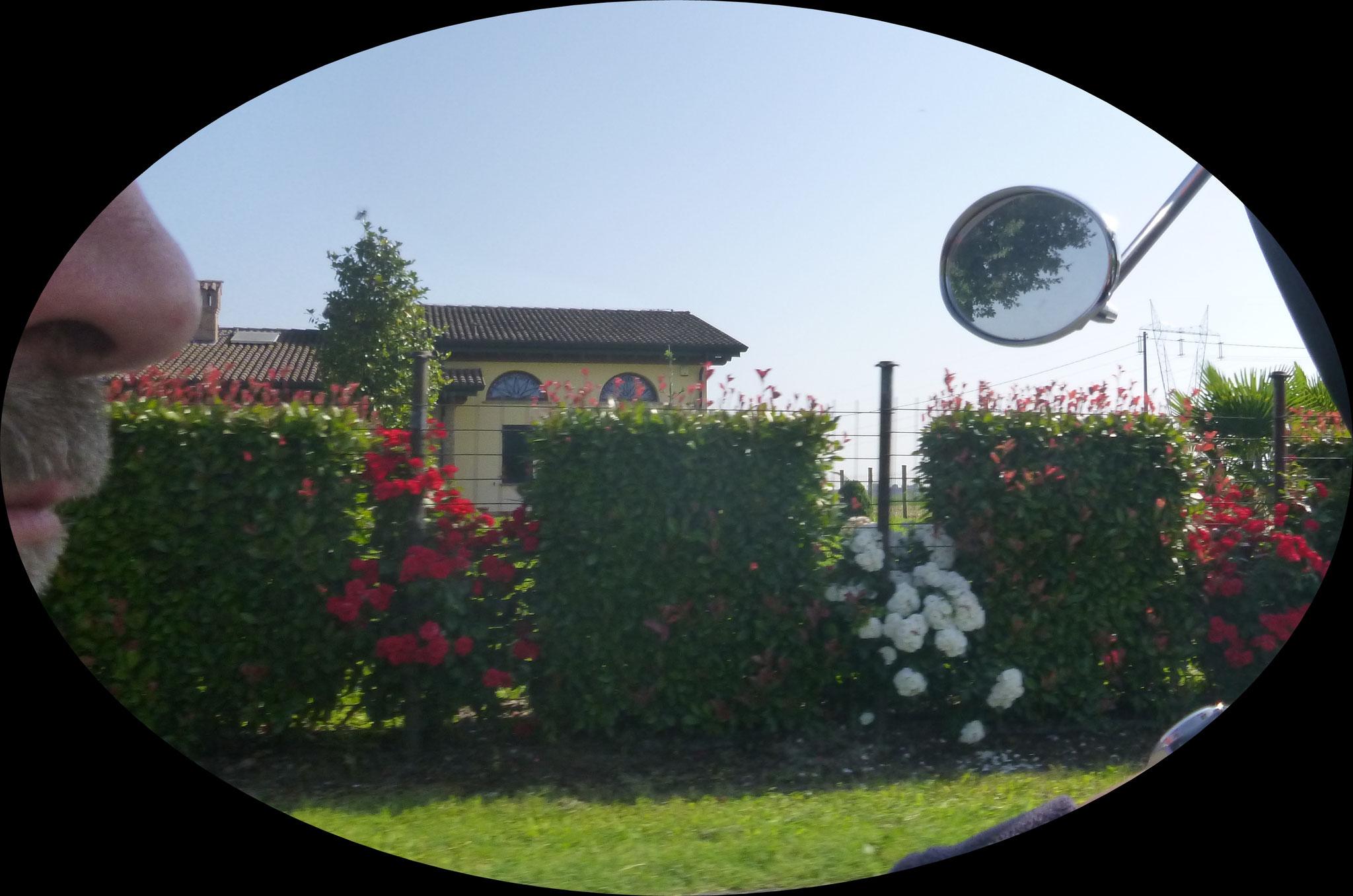 auch das ist Emilia-Romagna