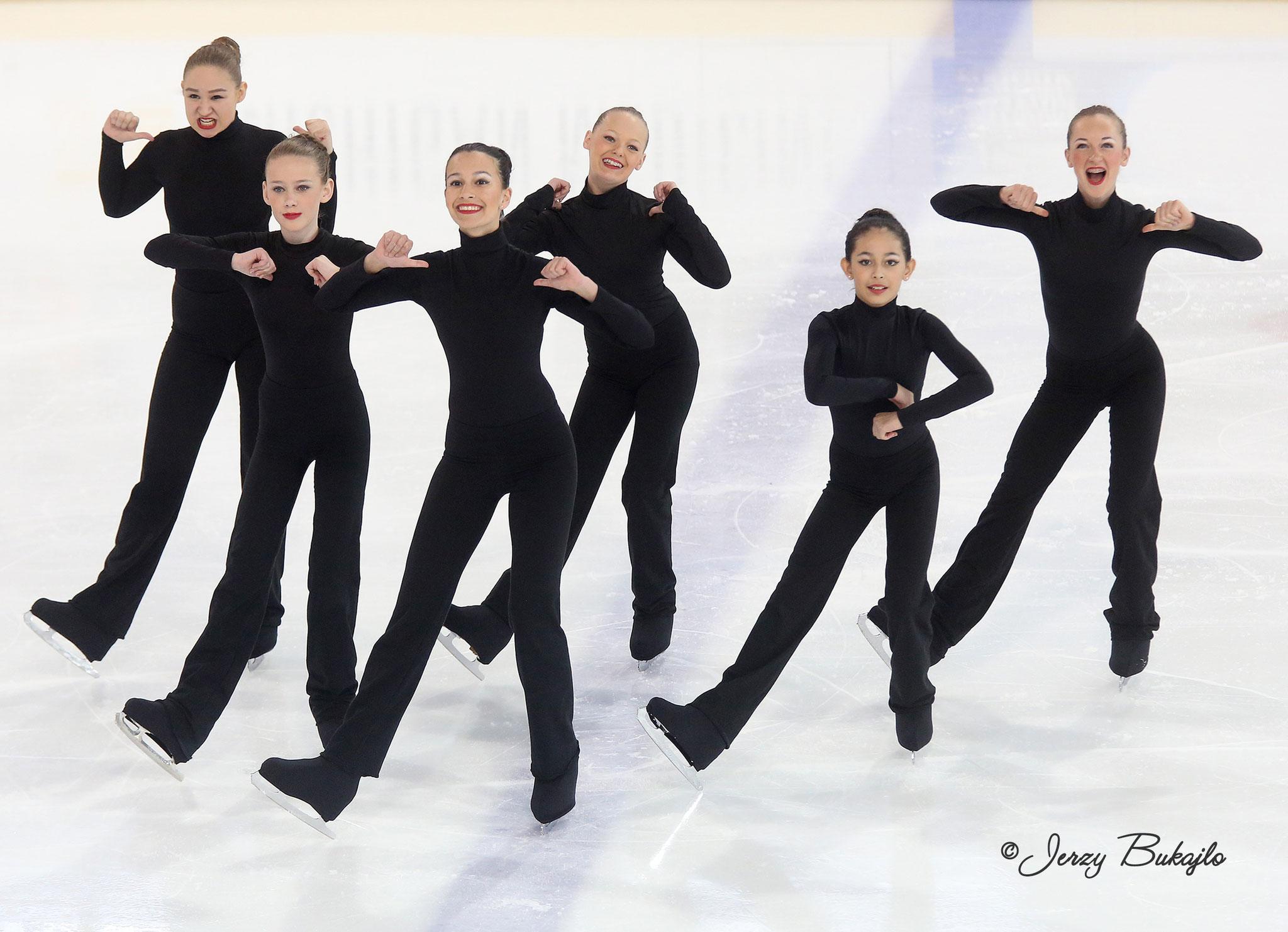 USA Virginia Ice Theatre