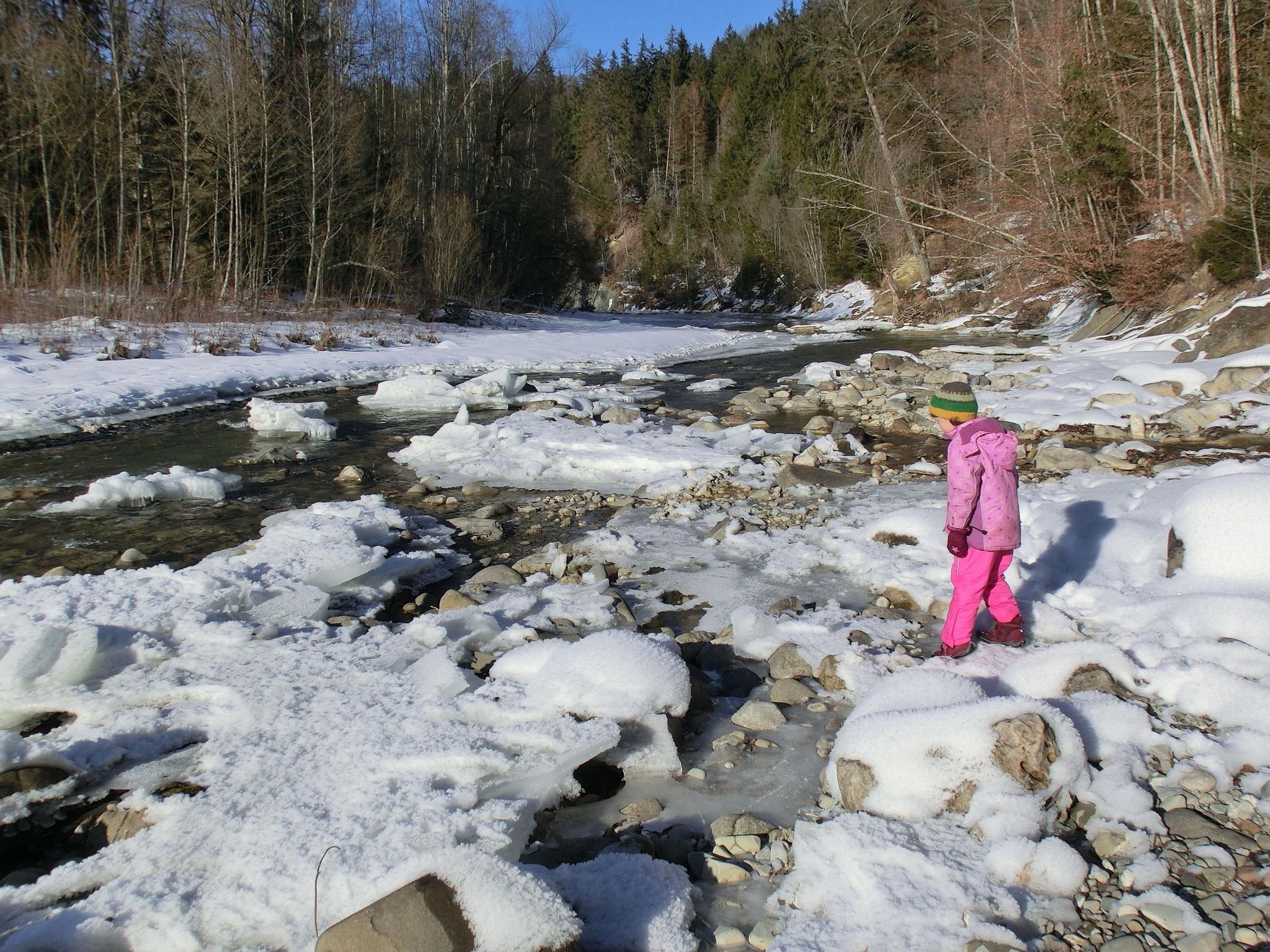 Ammer im Winter Foto: U. Jahn