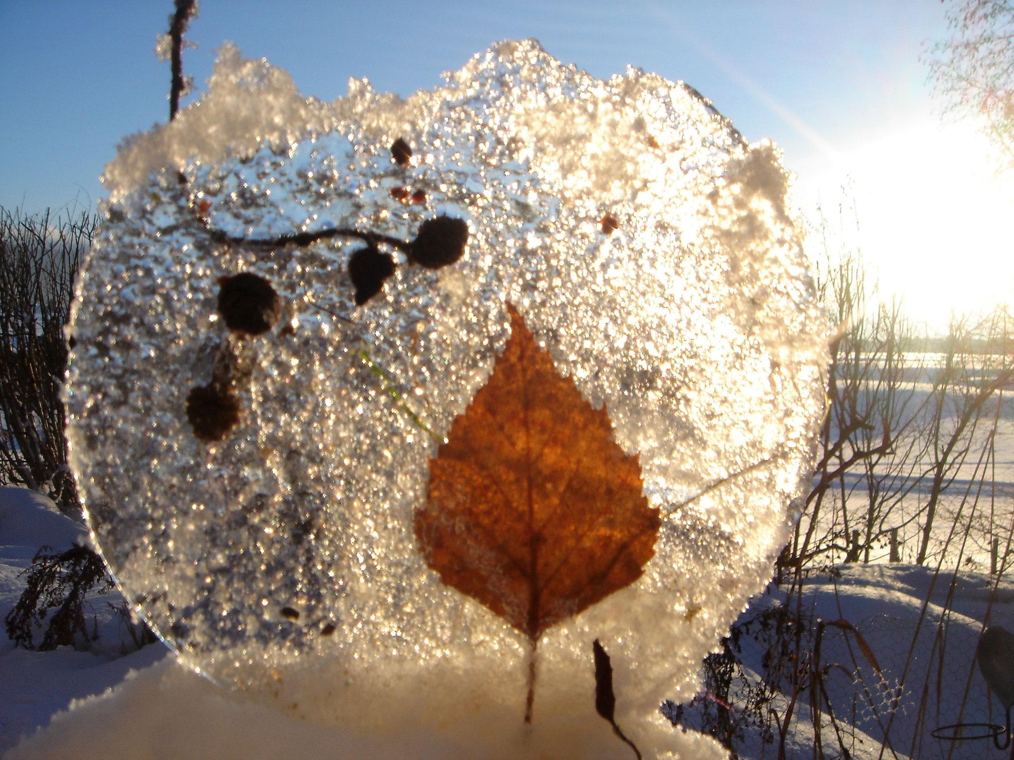 Eisplatte Foto: U. Jahn