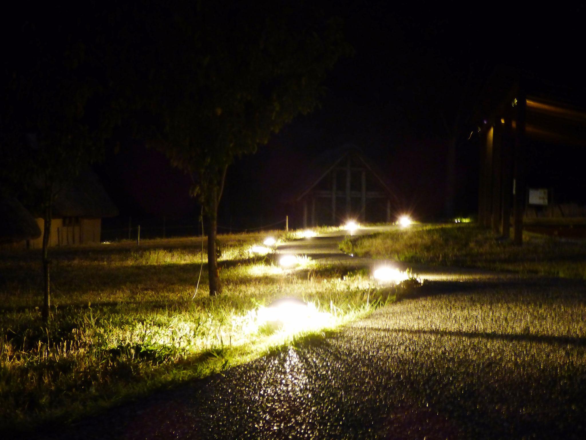 Notte al parco ... con cinema sotto le stelle 19 luglio 2016