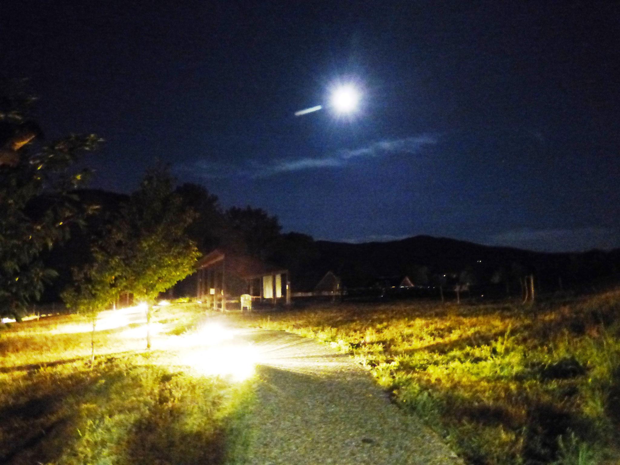 cinema sotto le stelle - parco archeologico di Travo 16 agosto