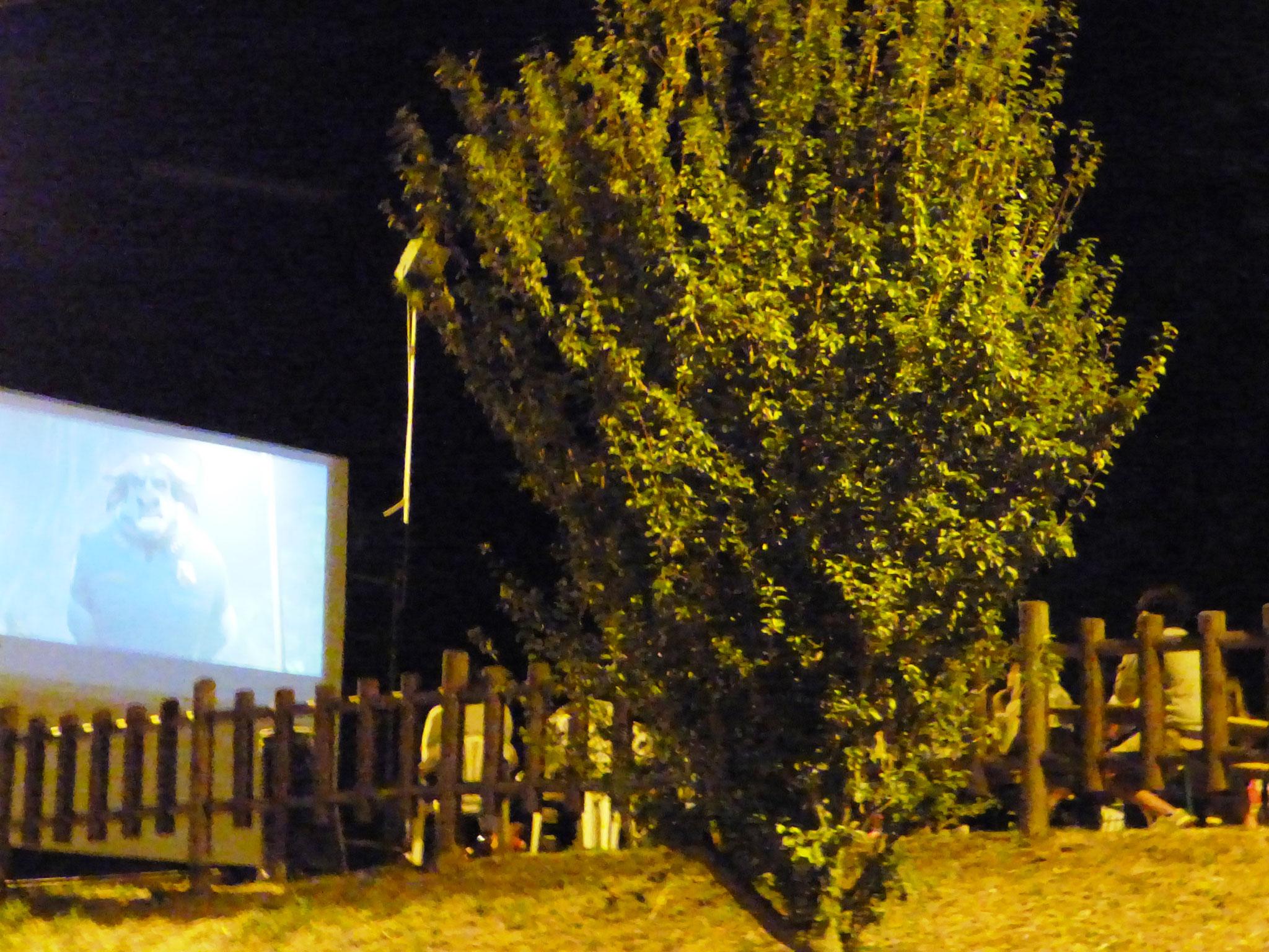 Pigazzano Cinema sotto le Stelle martedì 9 agosto 2016