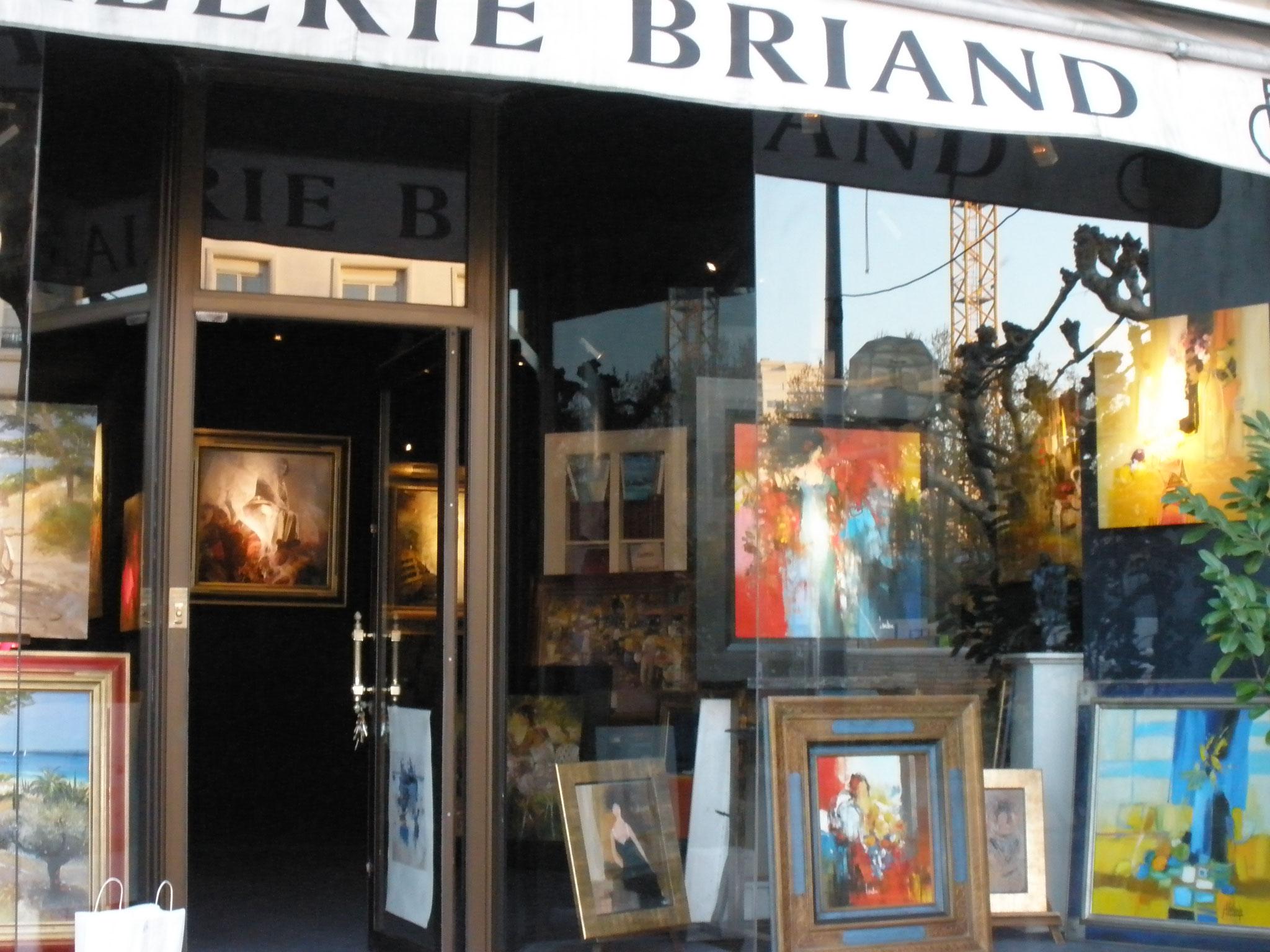 Galerie Briand - ROYAN (17)