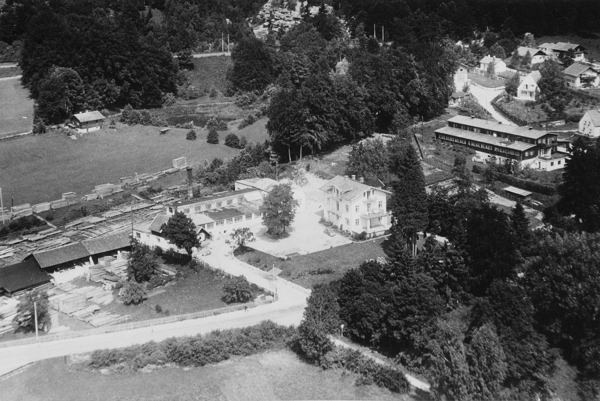 Tutzing Nord, Sägewerk Suiter & Landhaus Schüler, Foto um 1950