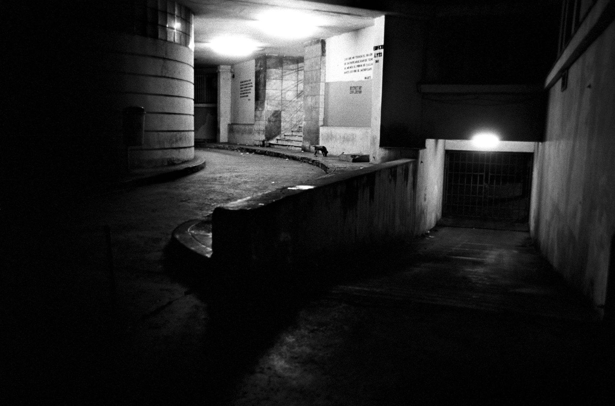 © Itziar Leemans