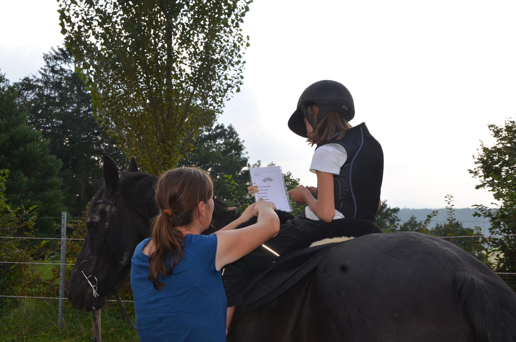 Am Pferd liest es sich viel leichter!