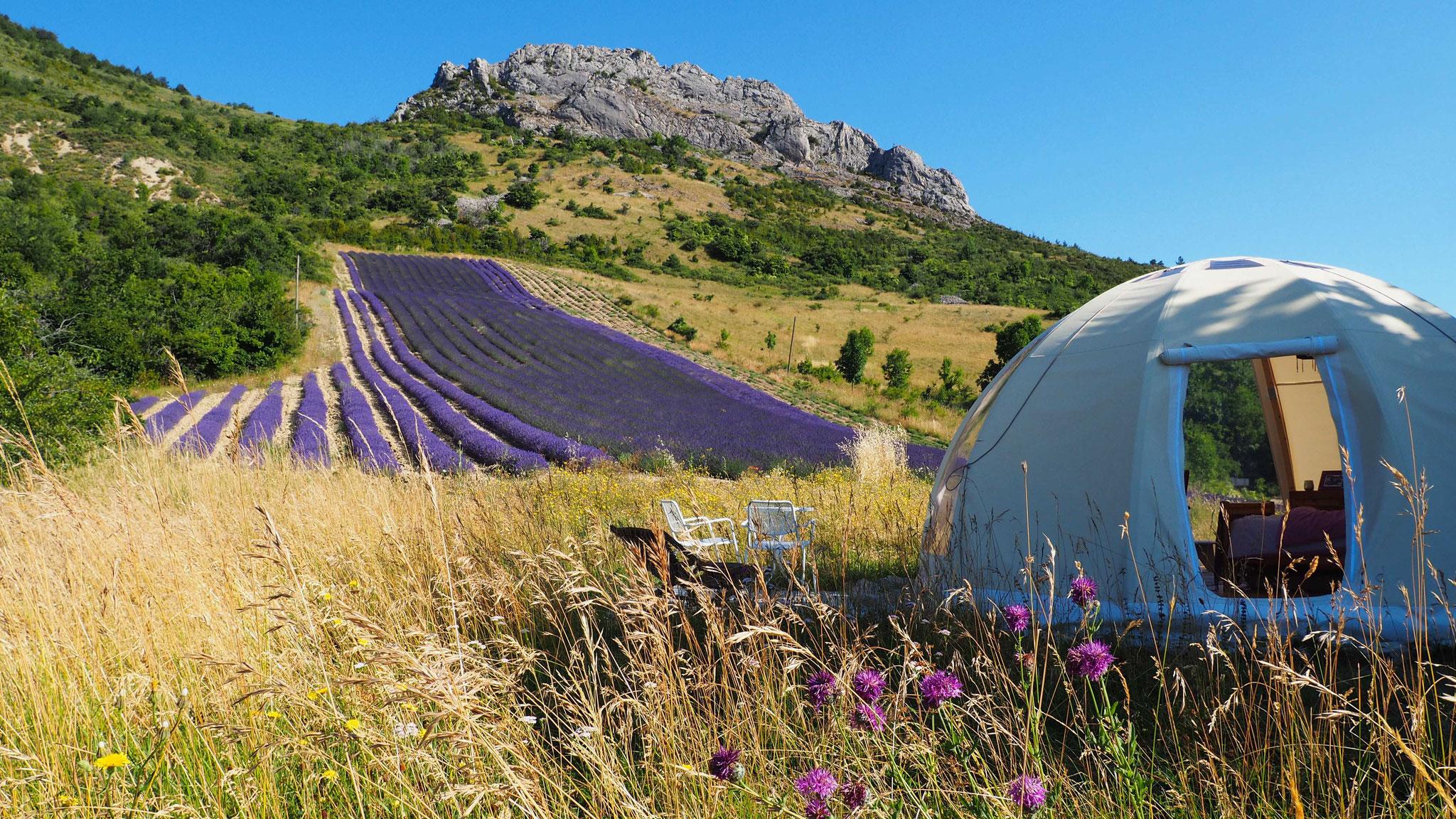 Le wigwam bulle lavande. Izon Nature : hébergements et table d'hôtes insolites et écoresponsables dans la Drôme provençale, trek dans la Méouge