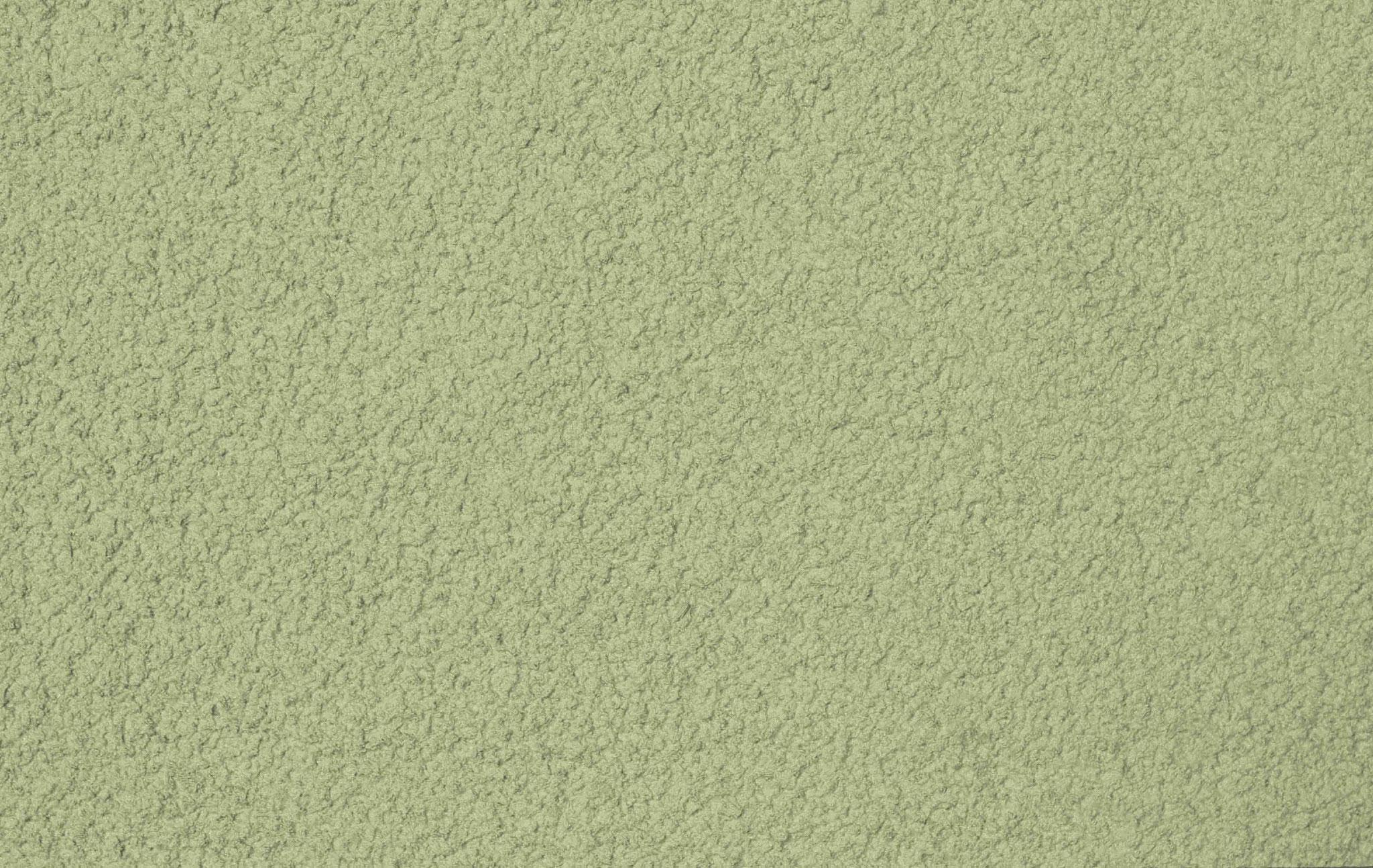 Colorado Kiwi
