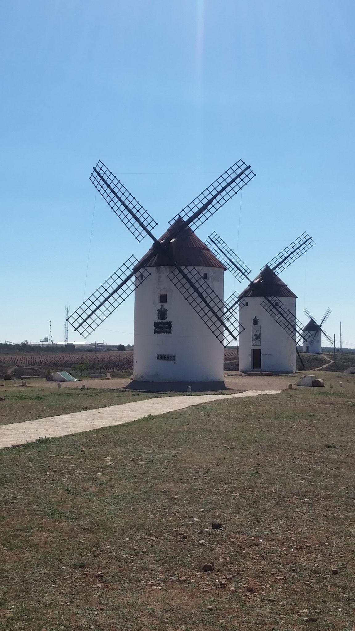 Les moulins de Mota del cuervo