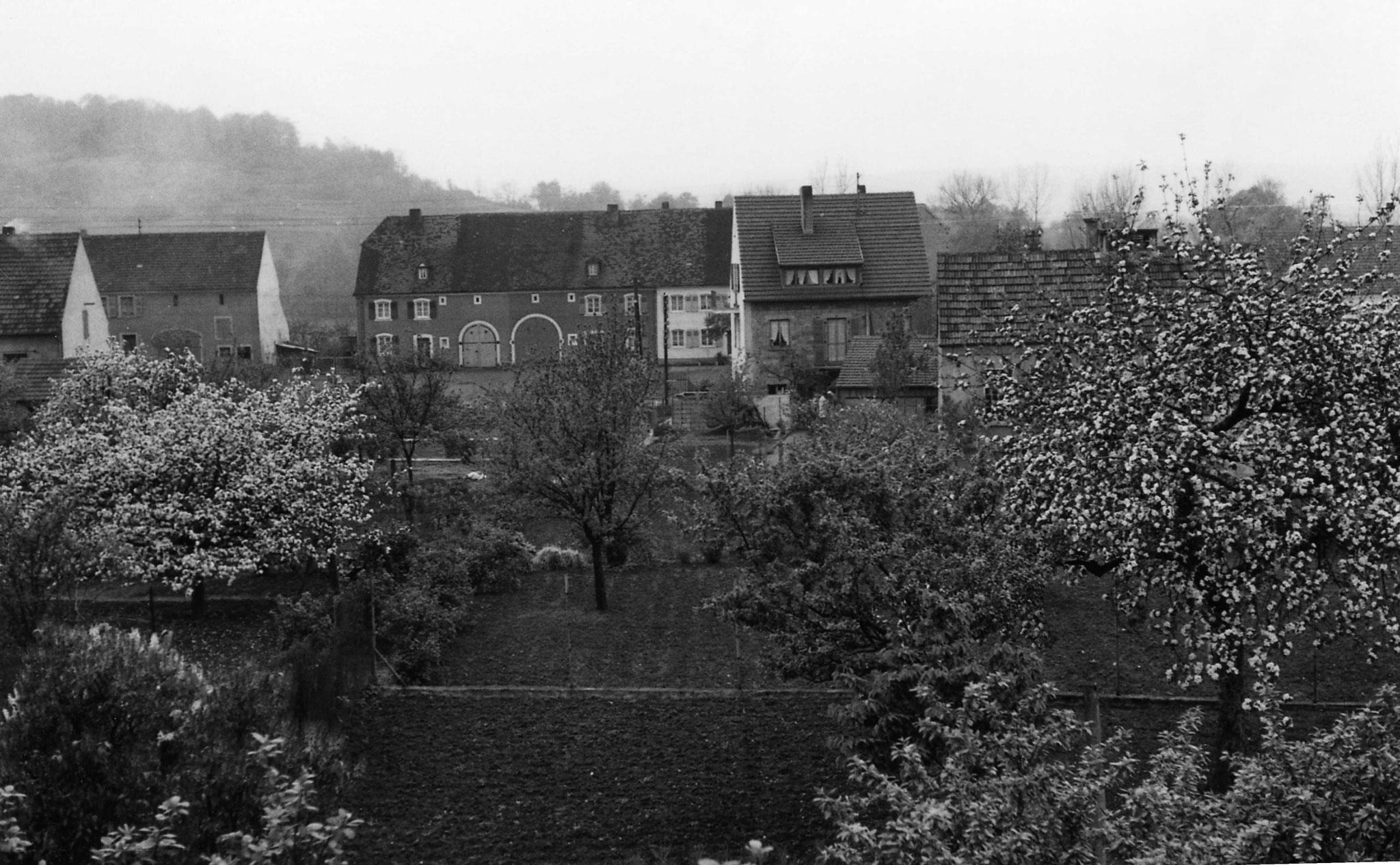 Blick von der Kettelerstraße zur heutigen Bliestalstraße