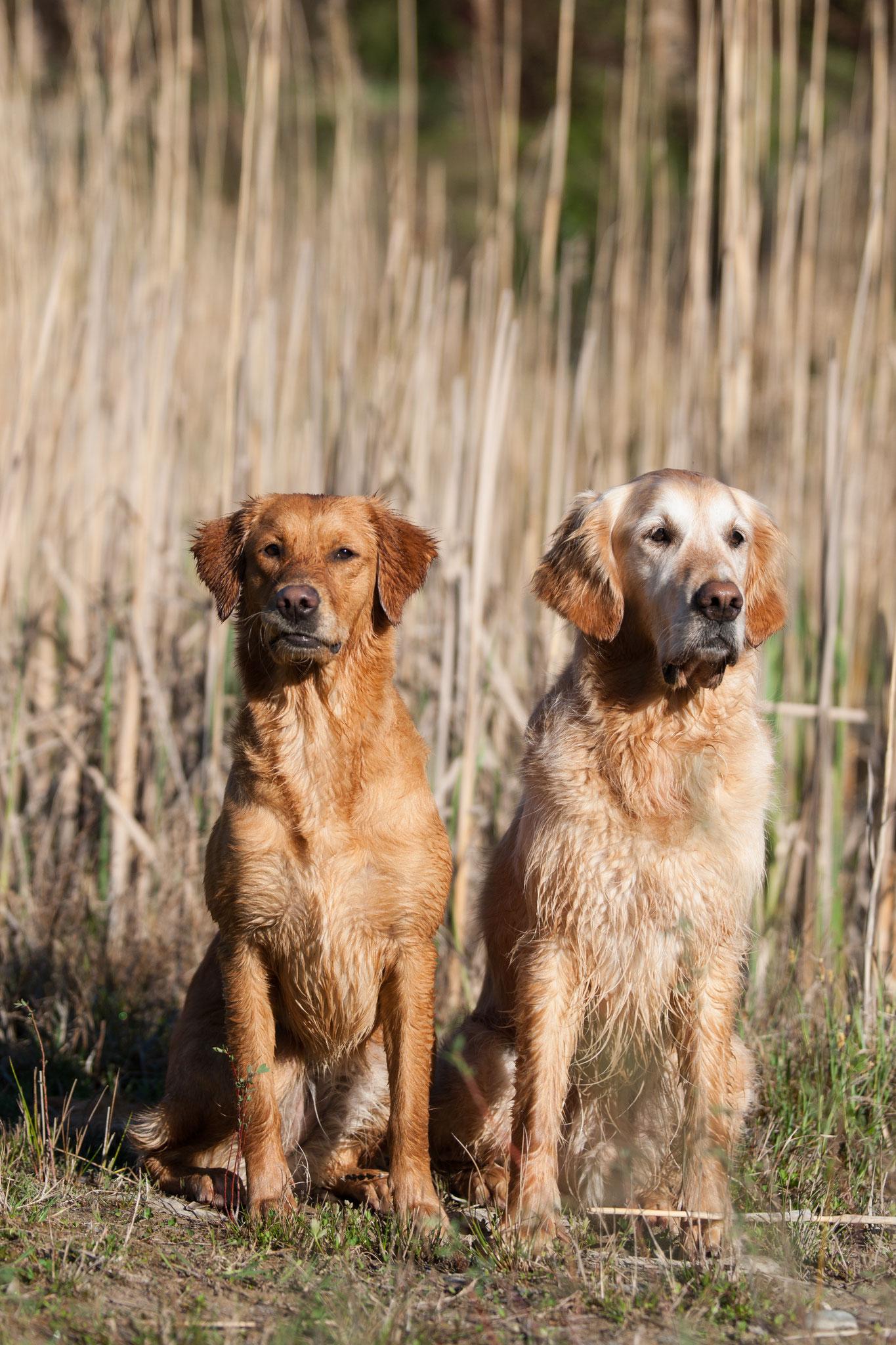 Lynn und Sunny - Photo by Katrin Staratzke-Schamaun