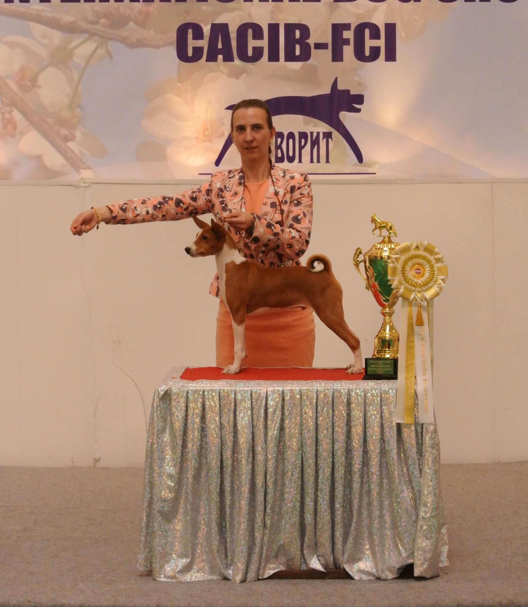 2014.05.10 CACIB Omsk - BISBaby