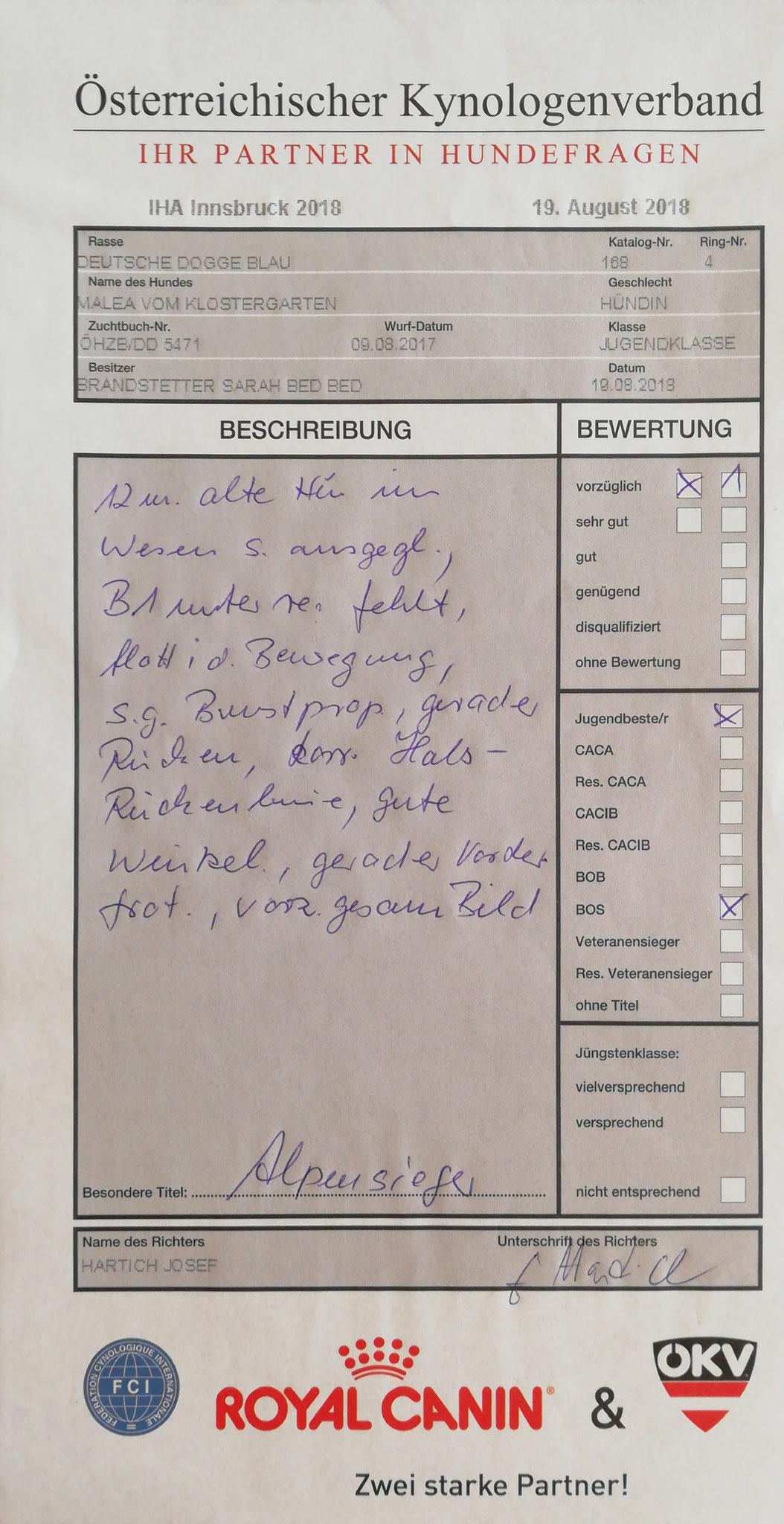 Bewertung IHA Innsbruck Tag 2