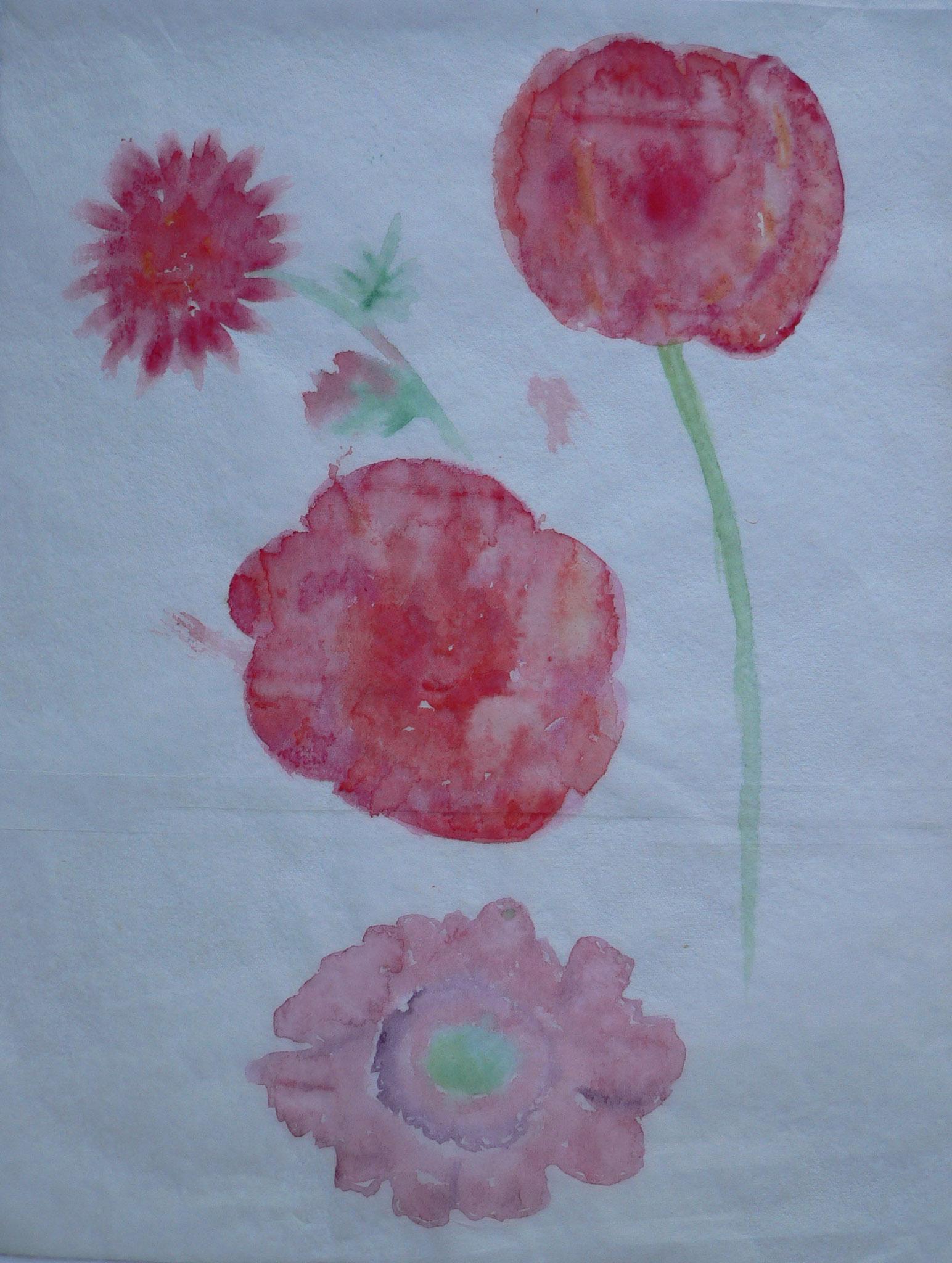 Blütenstudien