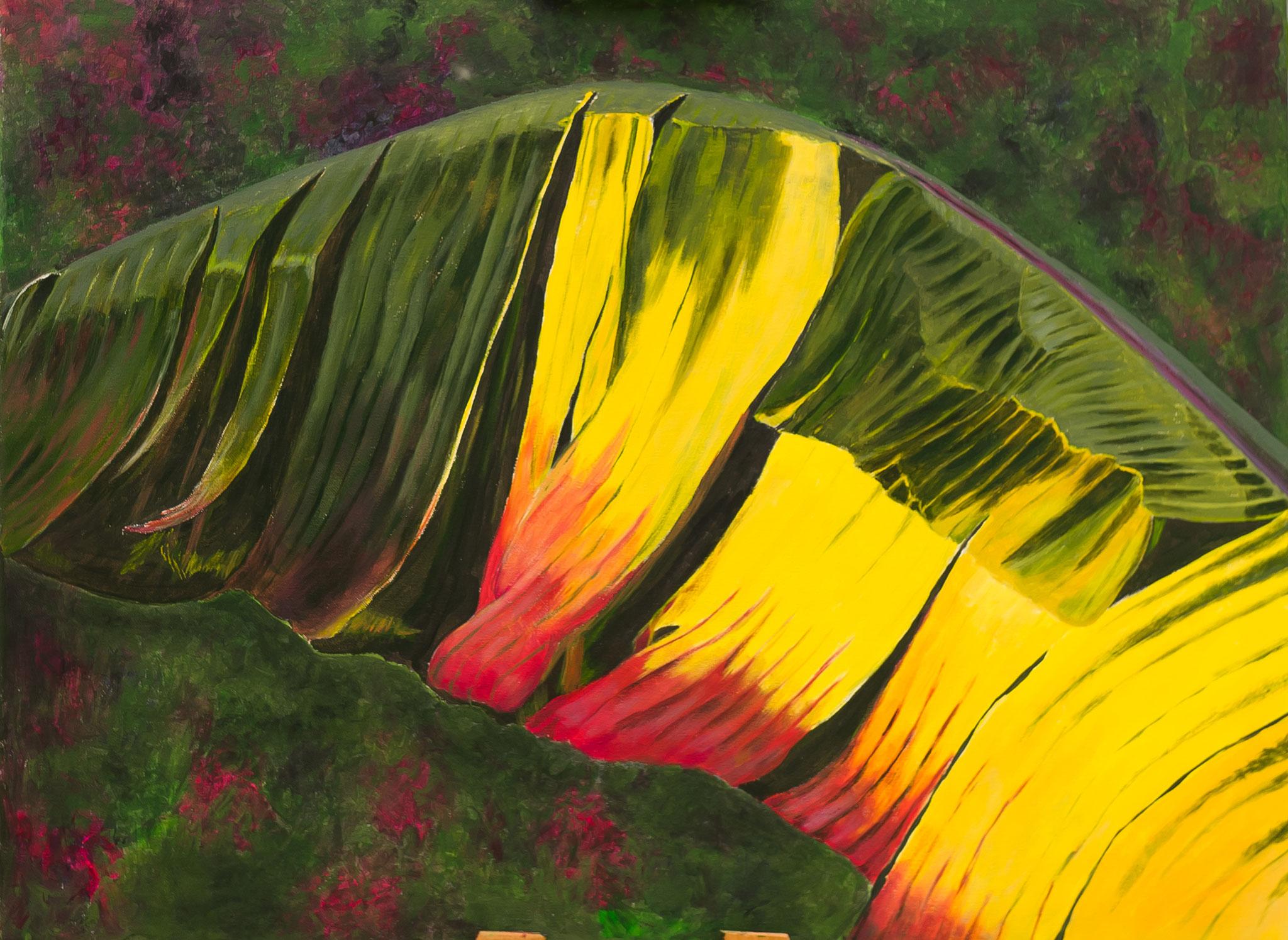 Bananenblatt im Herbst