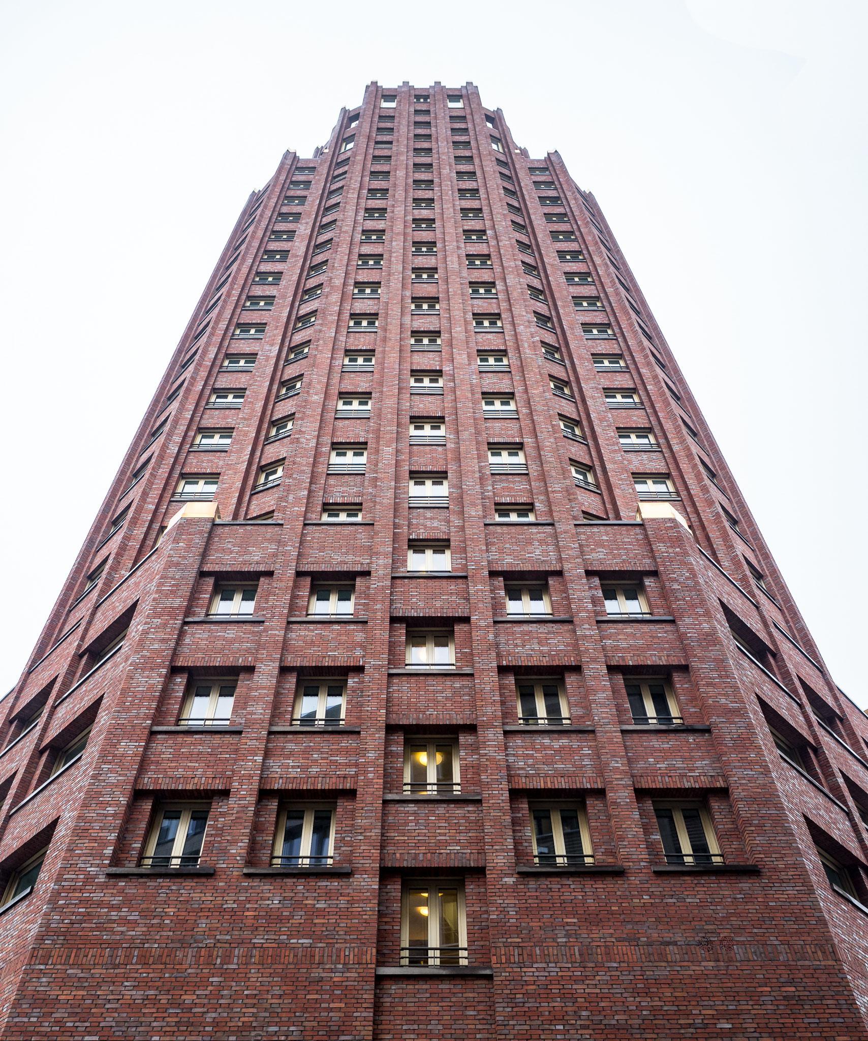 Babblfisch: Hotel erectus