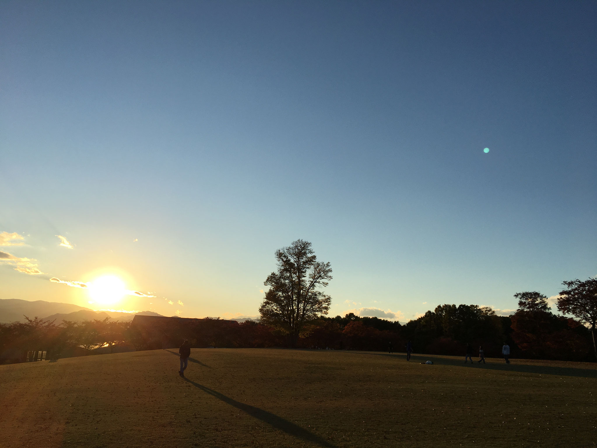 夕日の芝生広場