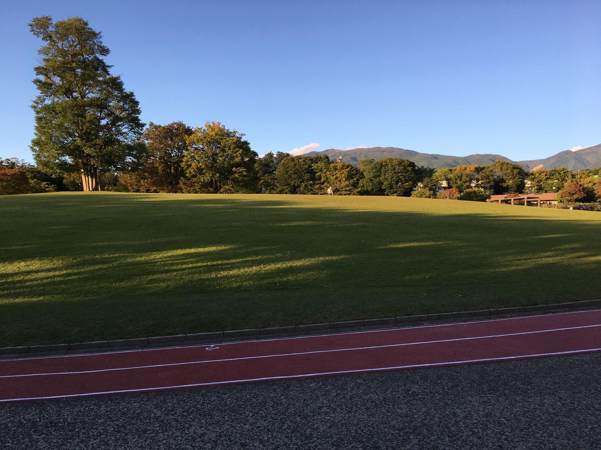 芝生広場のジョギングコース
