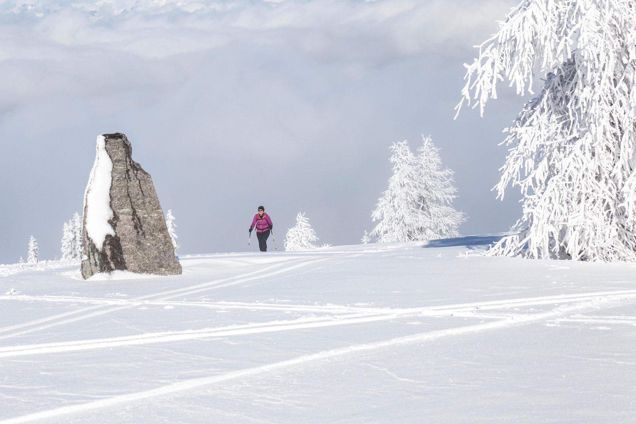 Winterwandern in der Umgebung
