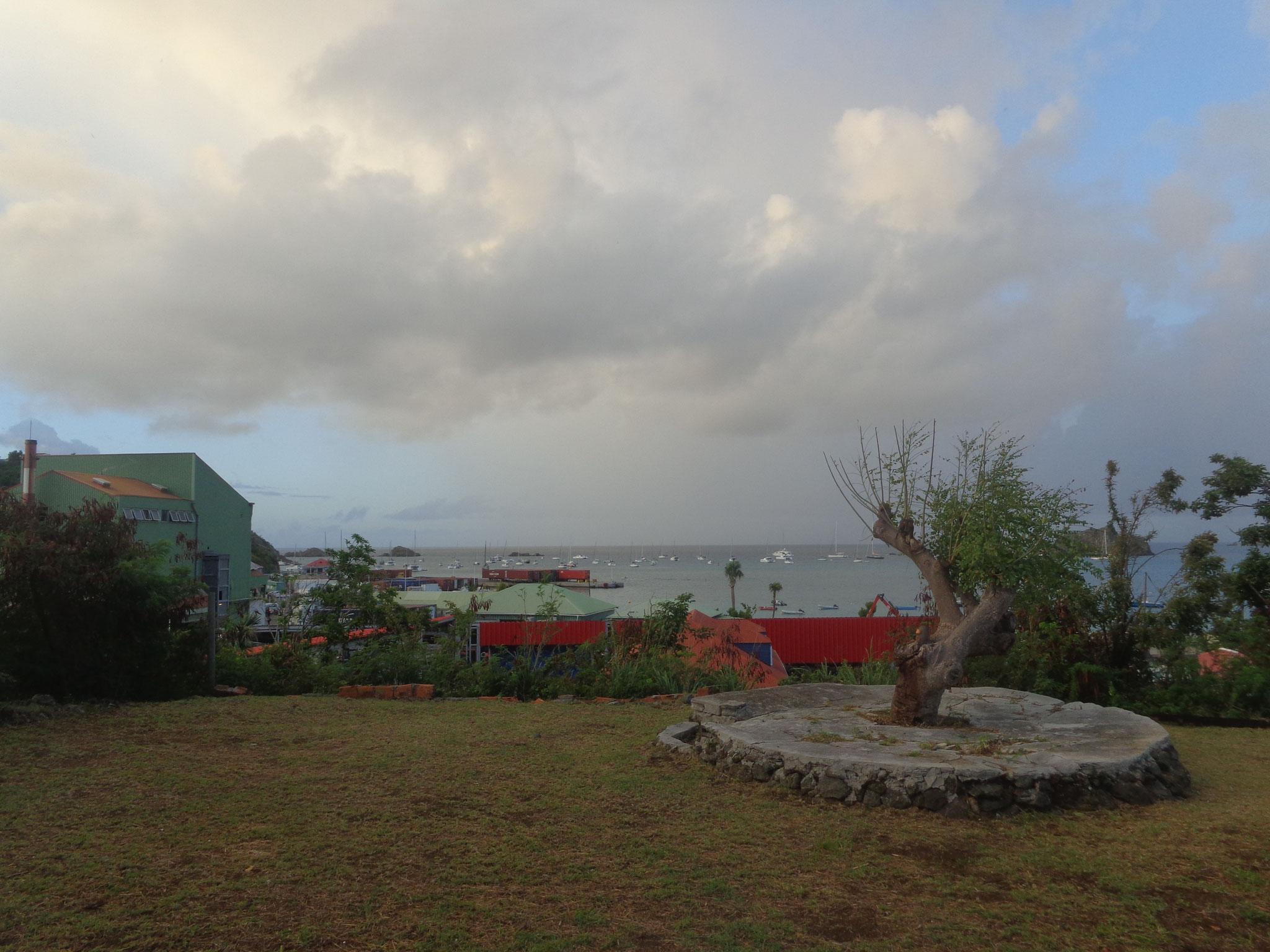 La vue sur notre jardin