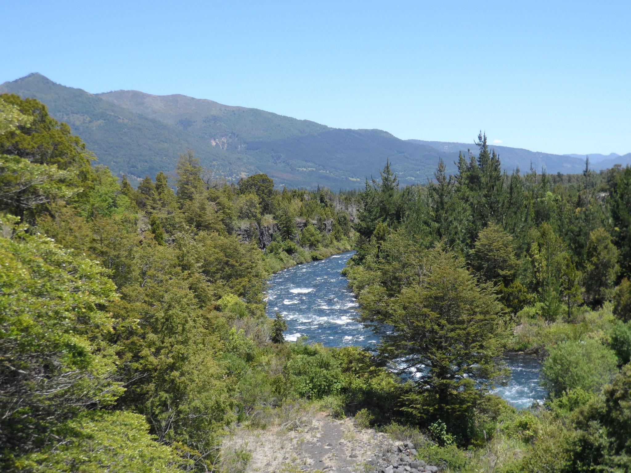 Le rio Trufful Trufful