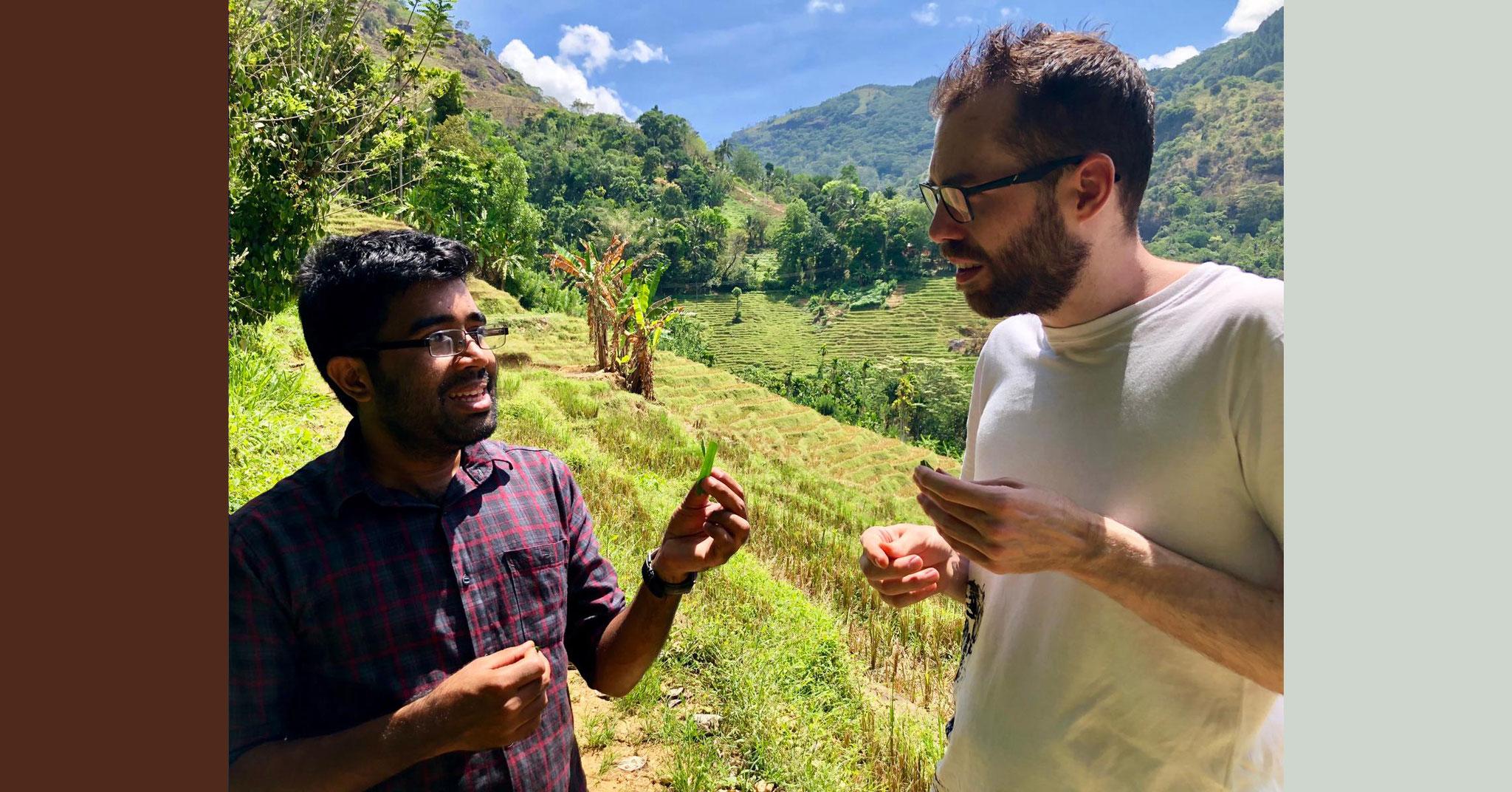 Reiseblog mit Rezepten aus Sri Lanka