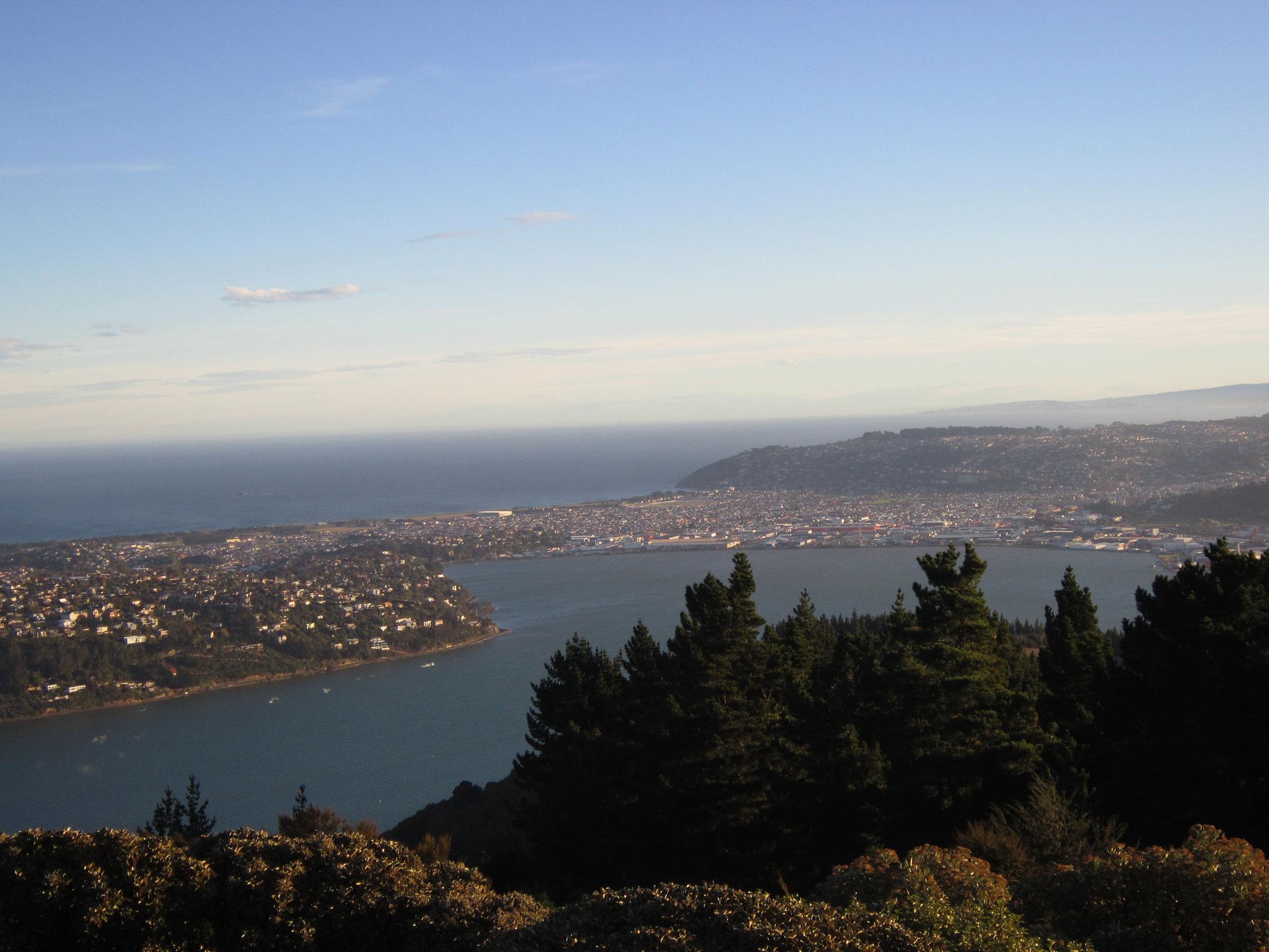 Dunedin vu depuis Signal Hill