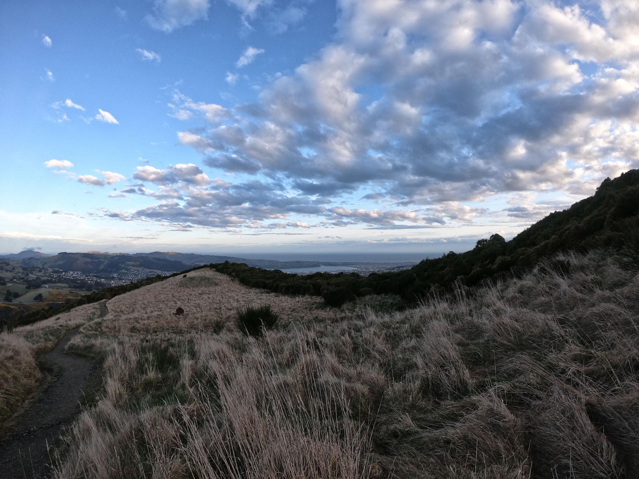 Dunedin depuis Swampy Summit