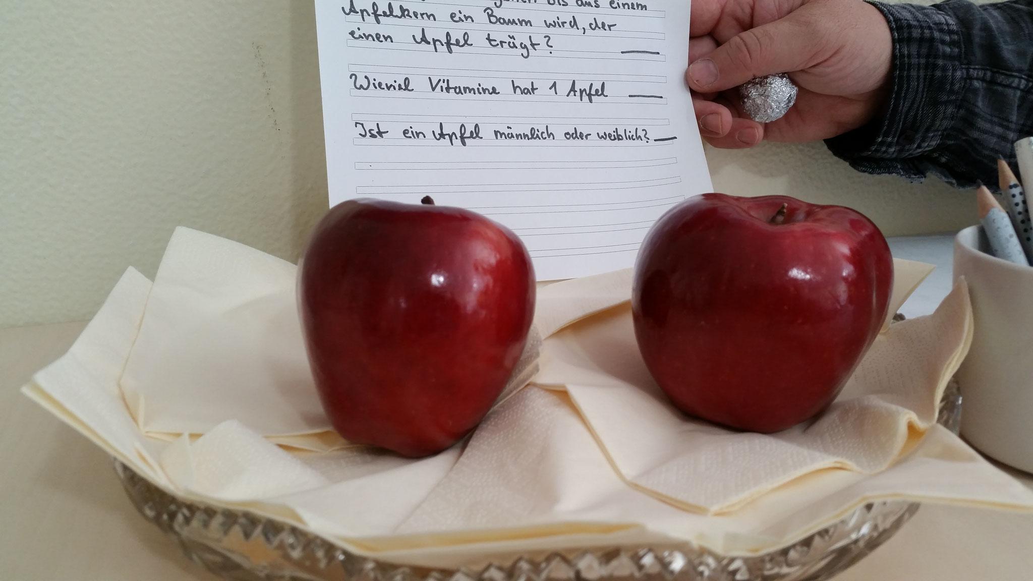 Die Preise für das Apfel- Rekorde-Quiz